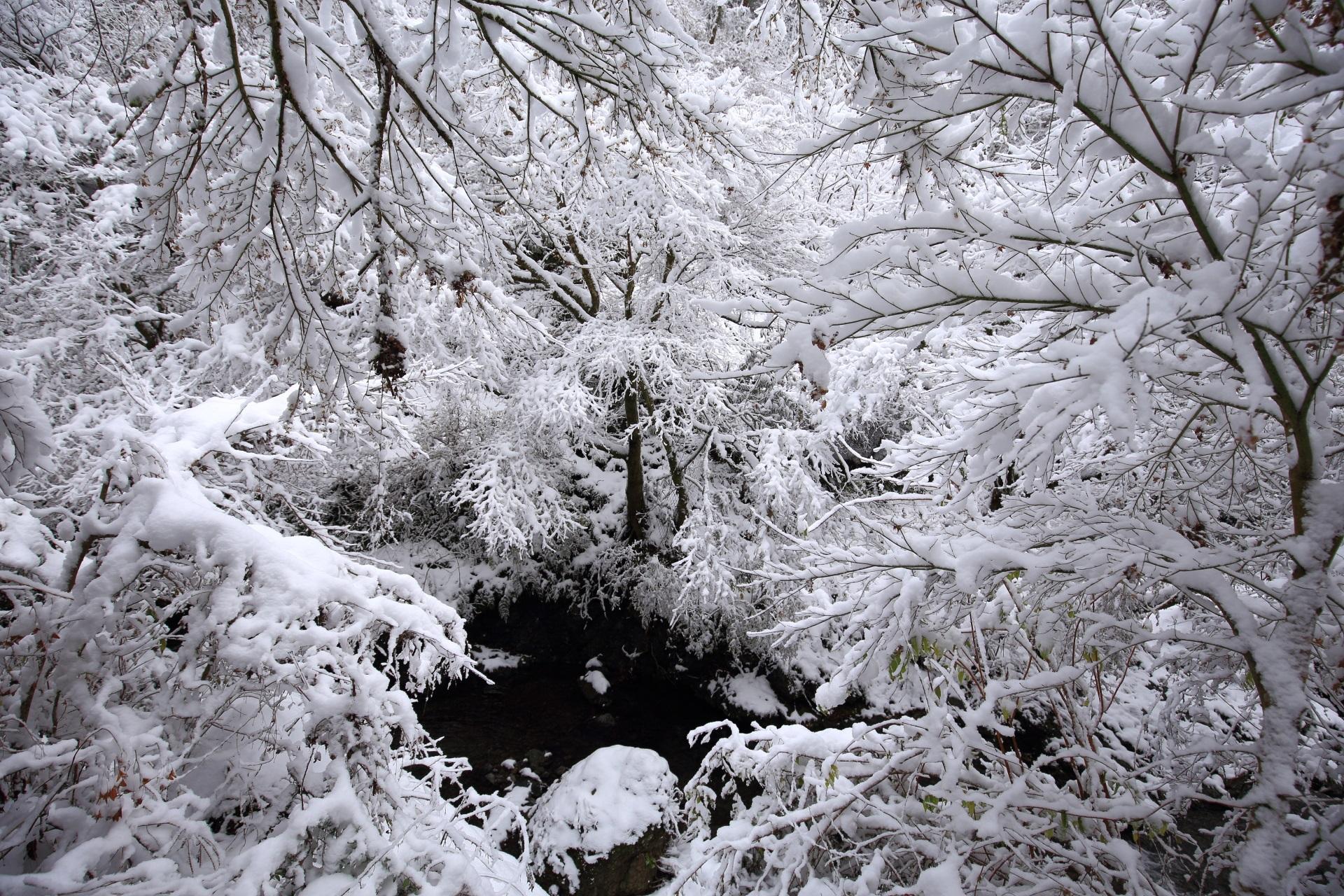 貴船川の凄すぎる雪景色