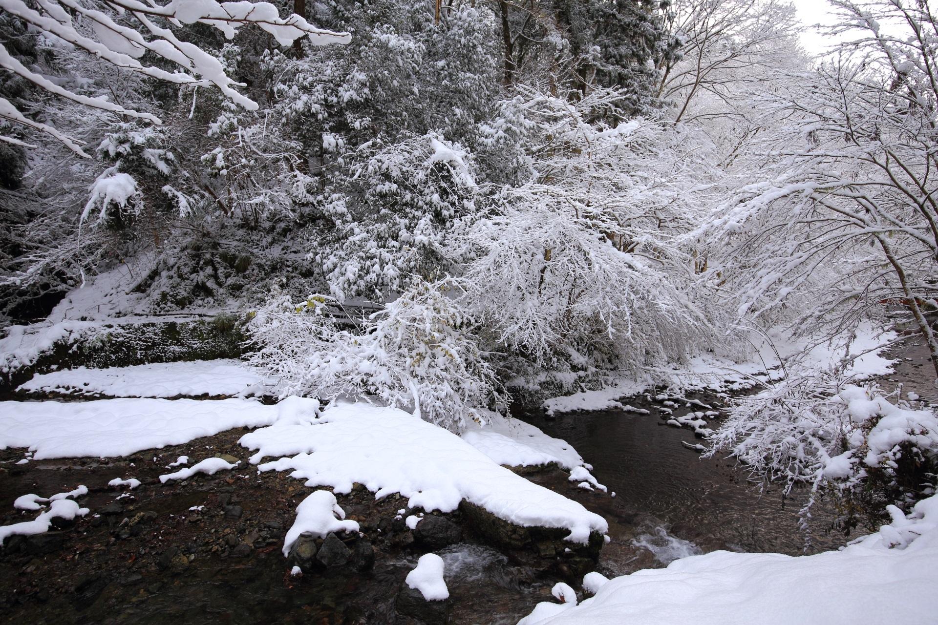 貴船川の水辺を彩る見事な雪景色