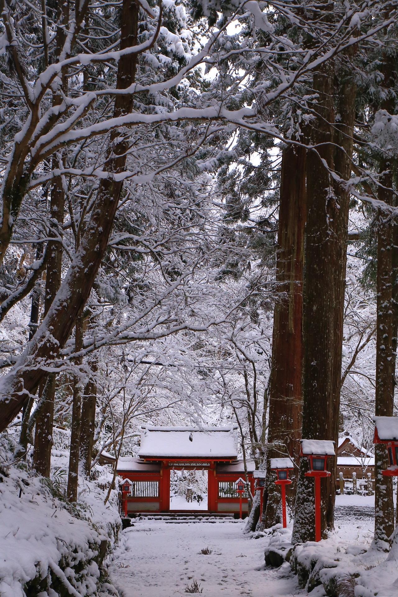 自然に中に鎮座する貴船神社の雪の奥宮
