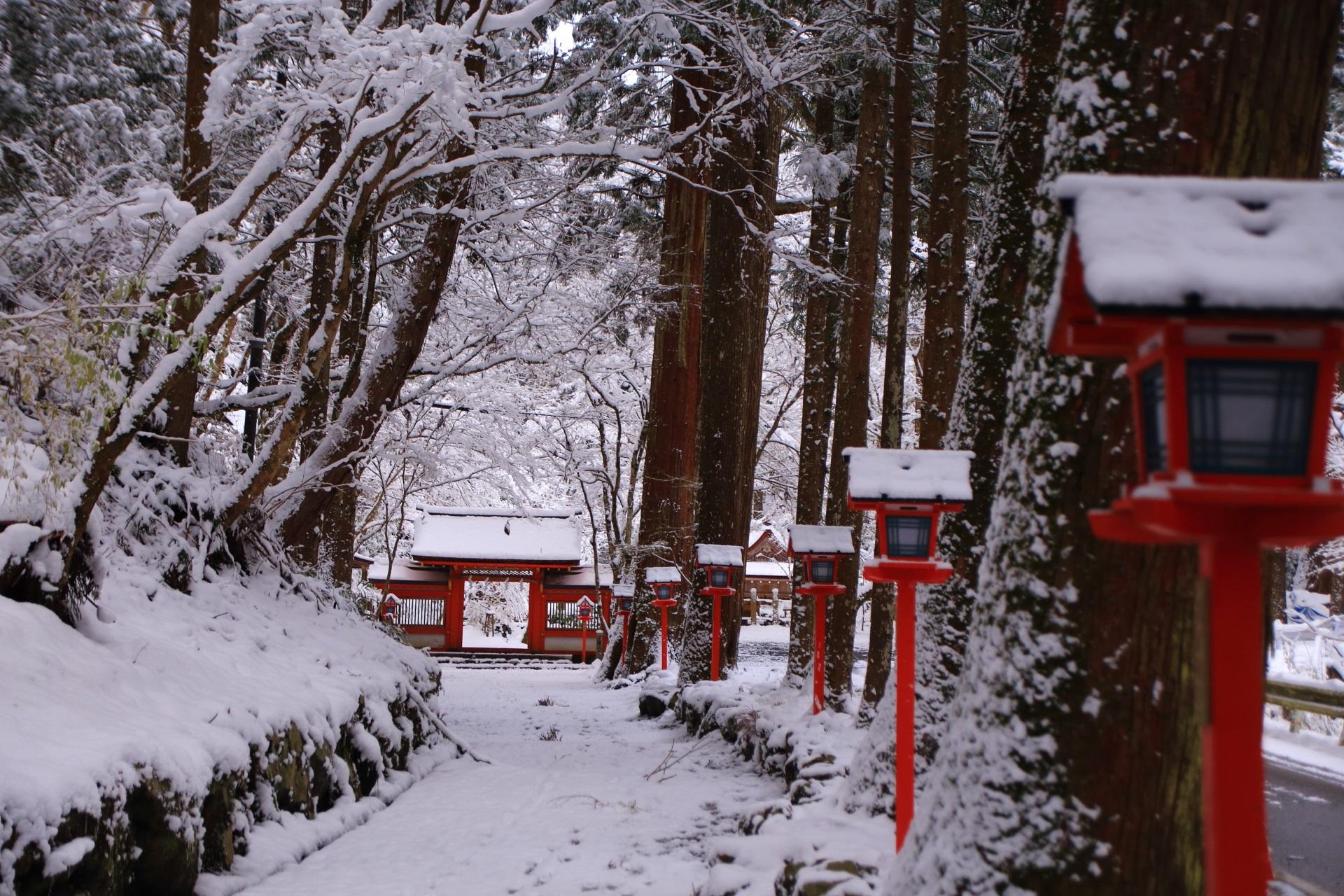 雪の参道の奥に見える貴船神社の奥宮の門