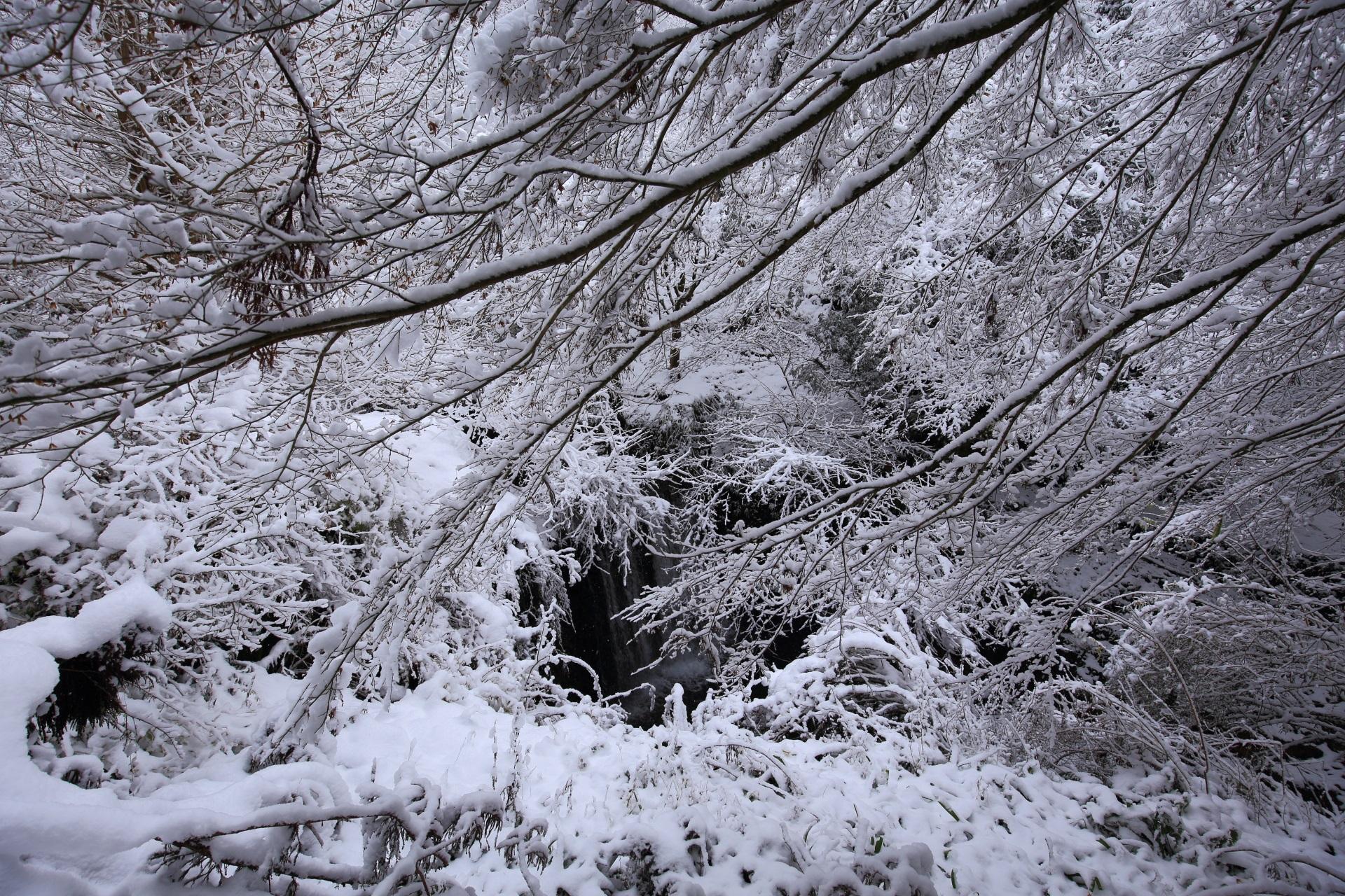 雪の中の小さな滝