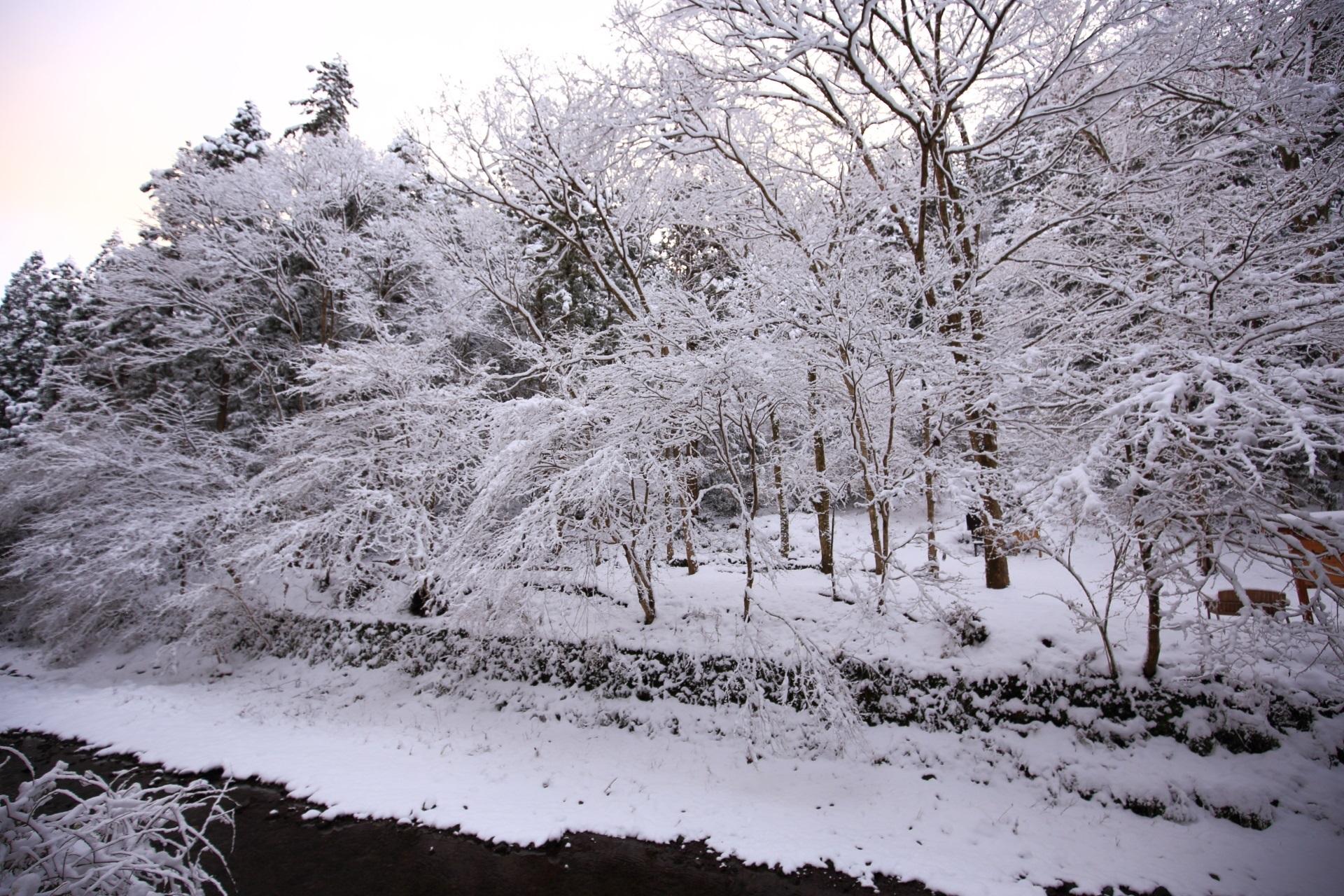 貴船川沿いの古事の森の雪景色