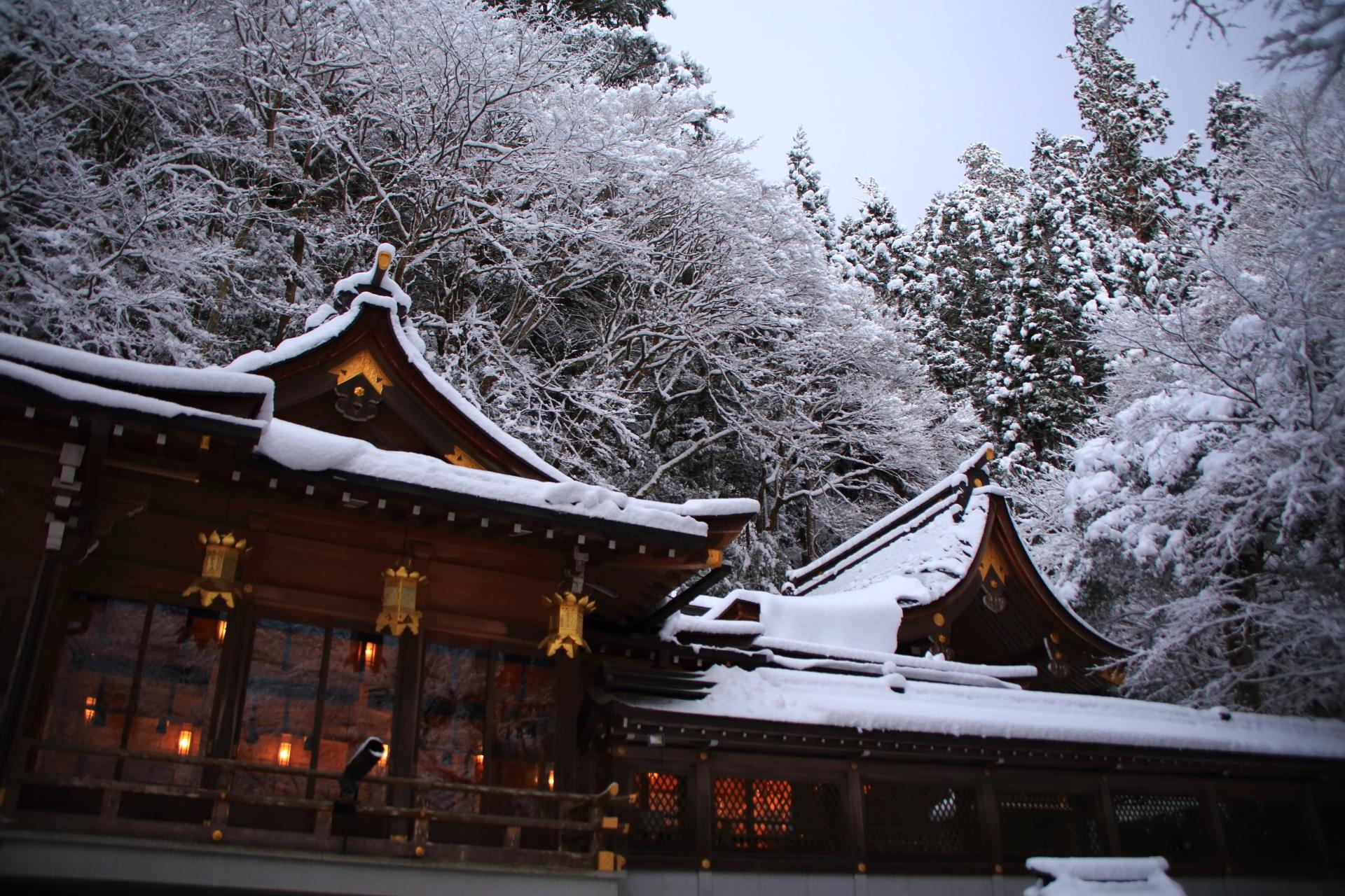 貴船神社の本宮の上で咲く雪の華