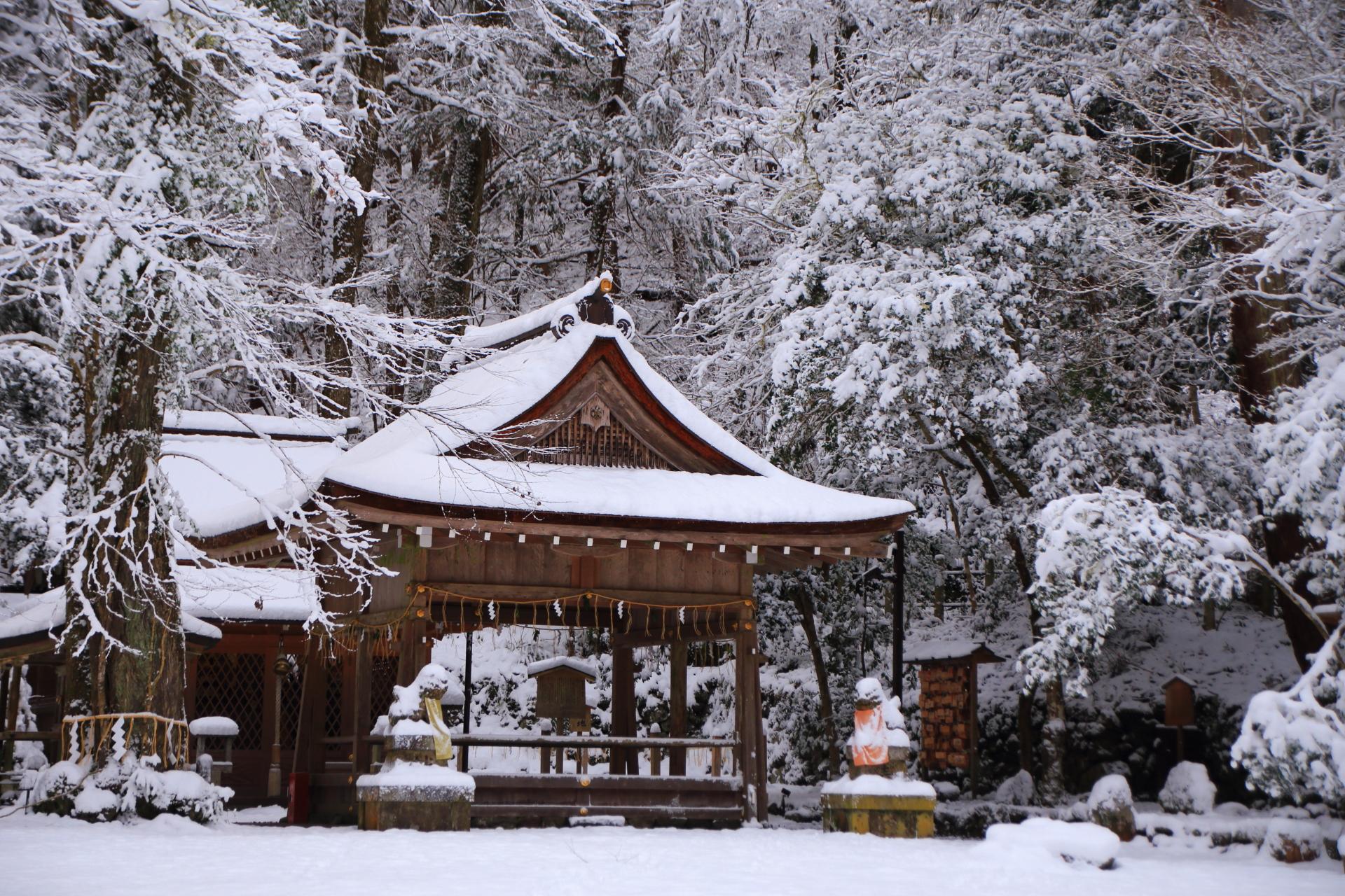木の種類も多く雪の花も多彩な貴船神社の奥宮