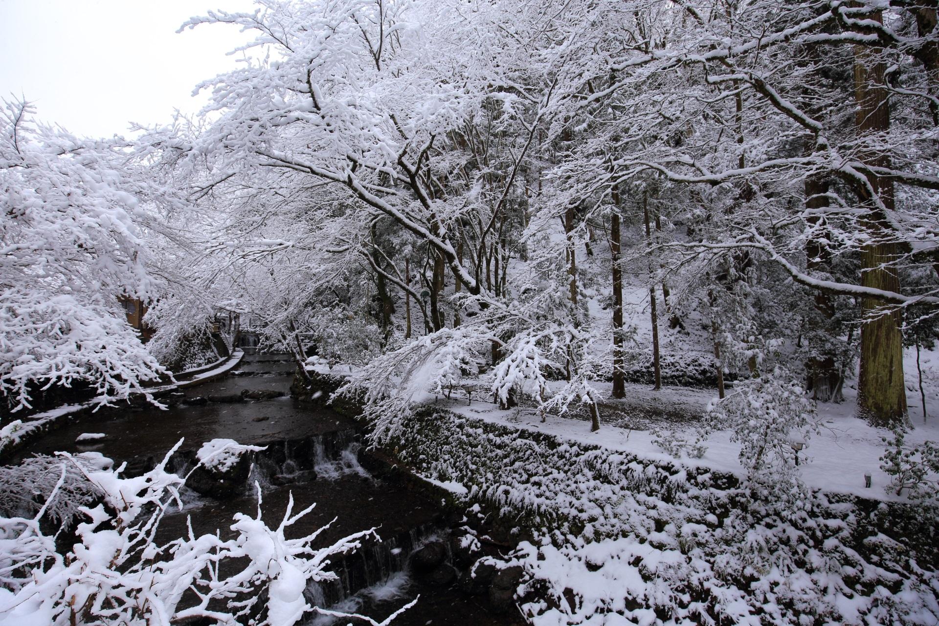 絶品の冬の貴船川