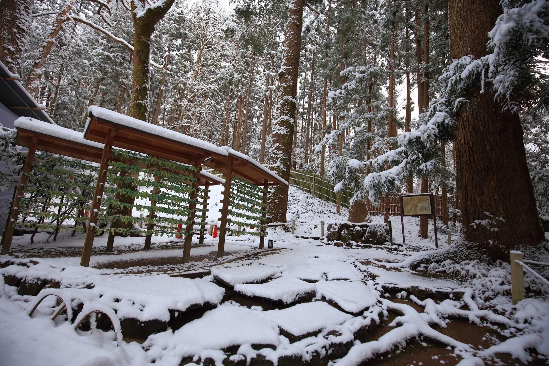 結社の緑色の「結び文」と雪景色