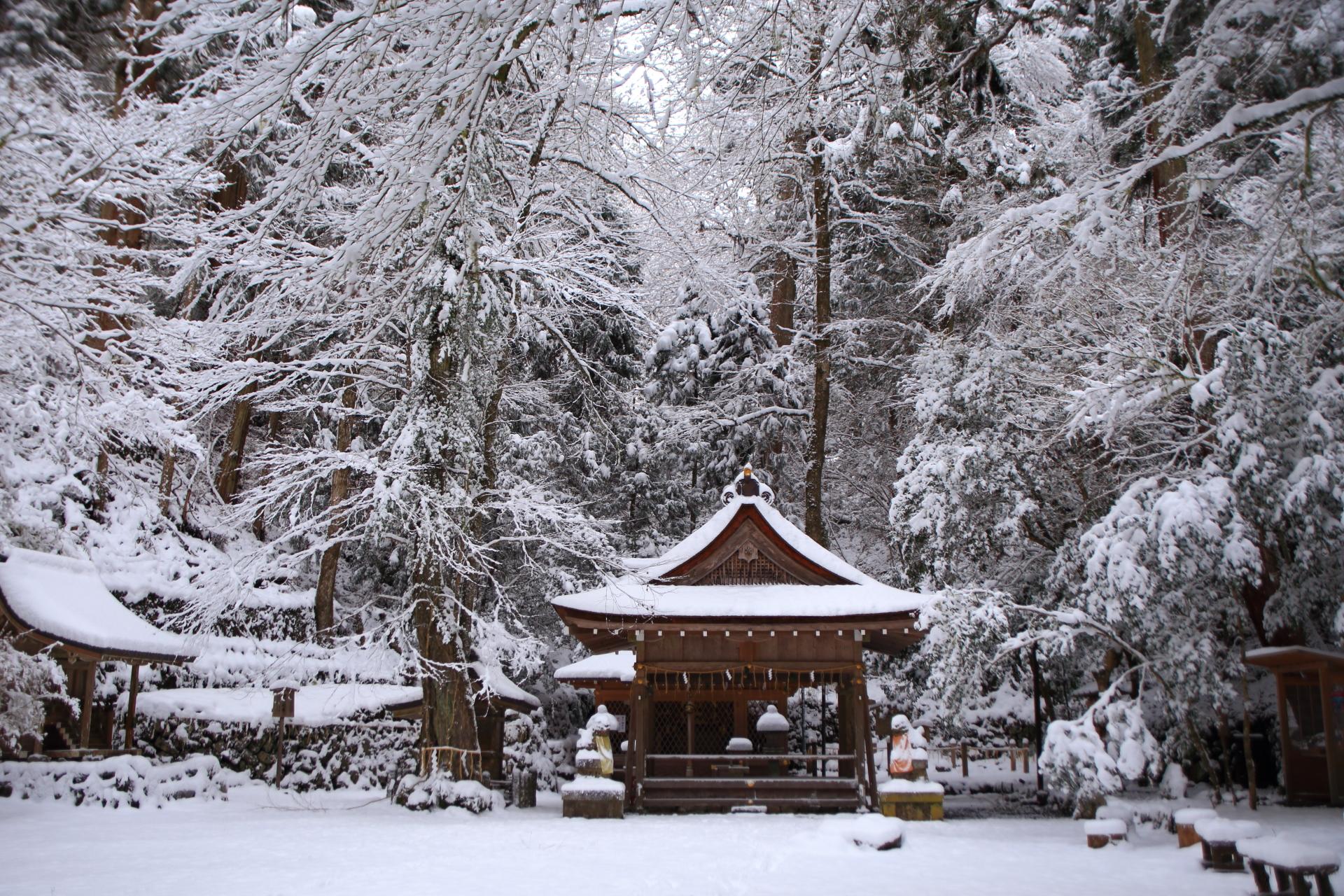 雪の花が咲き乱れる貴船神社奥宮