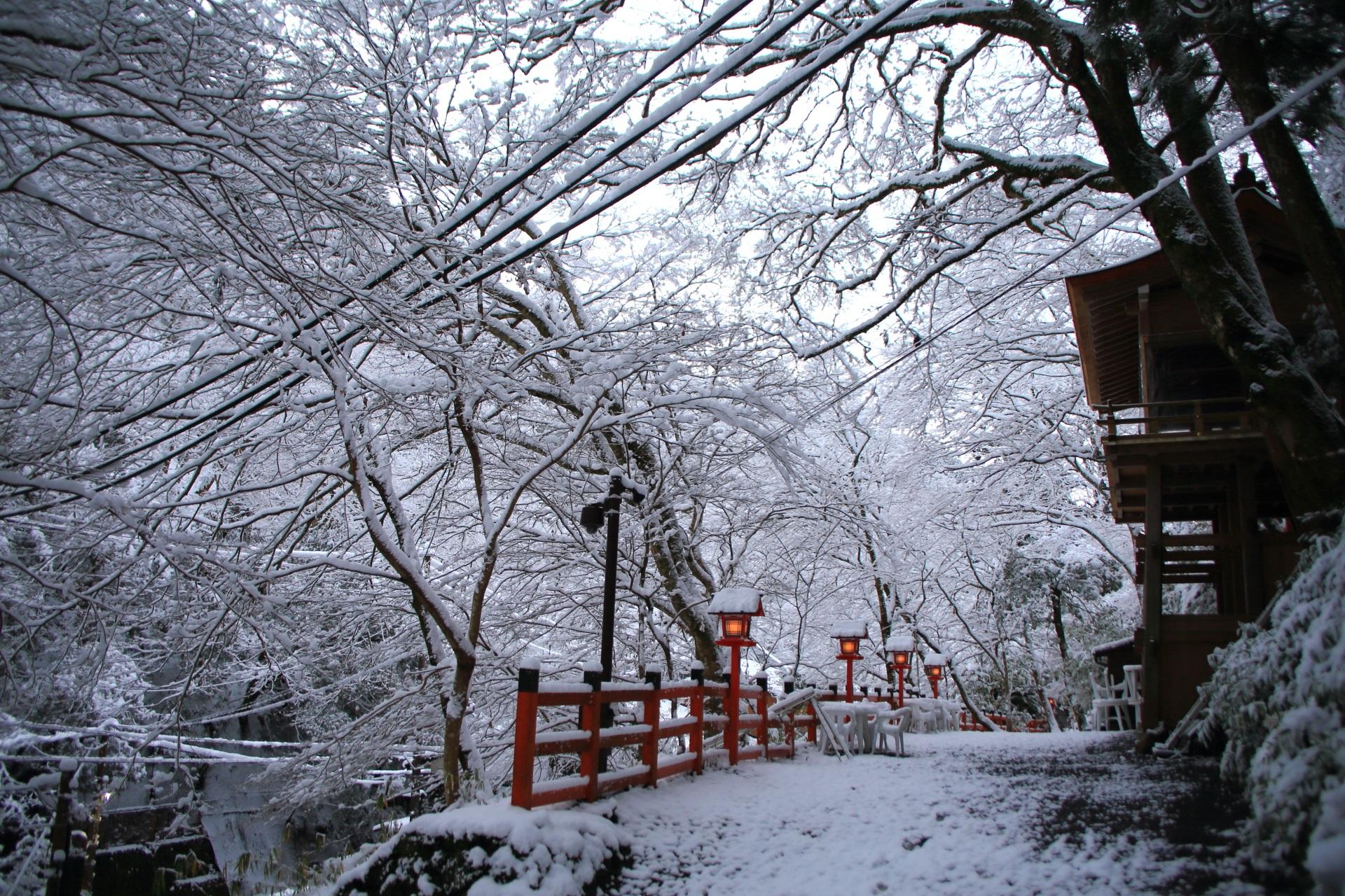 貴船神社の龍船閣と咲き乱れる雪の花