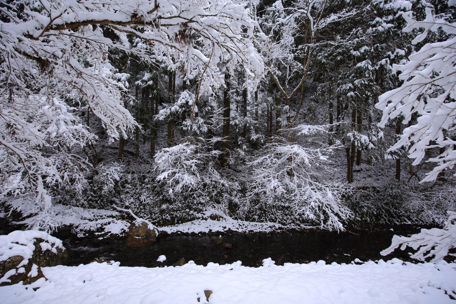 白い雪の空間を流れる貴船川