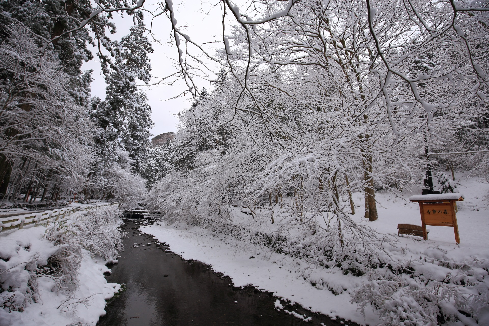 貴船川 冬景色 雪の花咲く幻想的な冬の水辺
