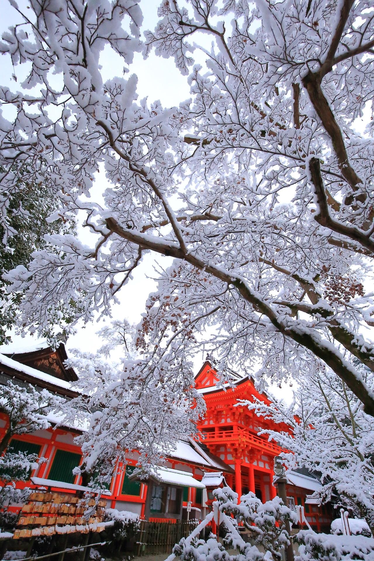 上賀茂神社の素晴らしい冬景色と雪の情景