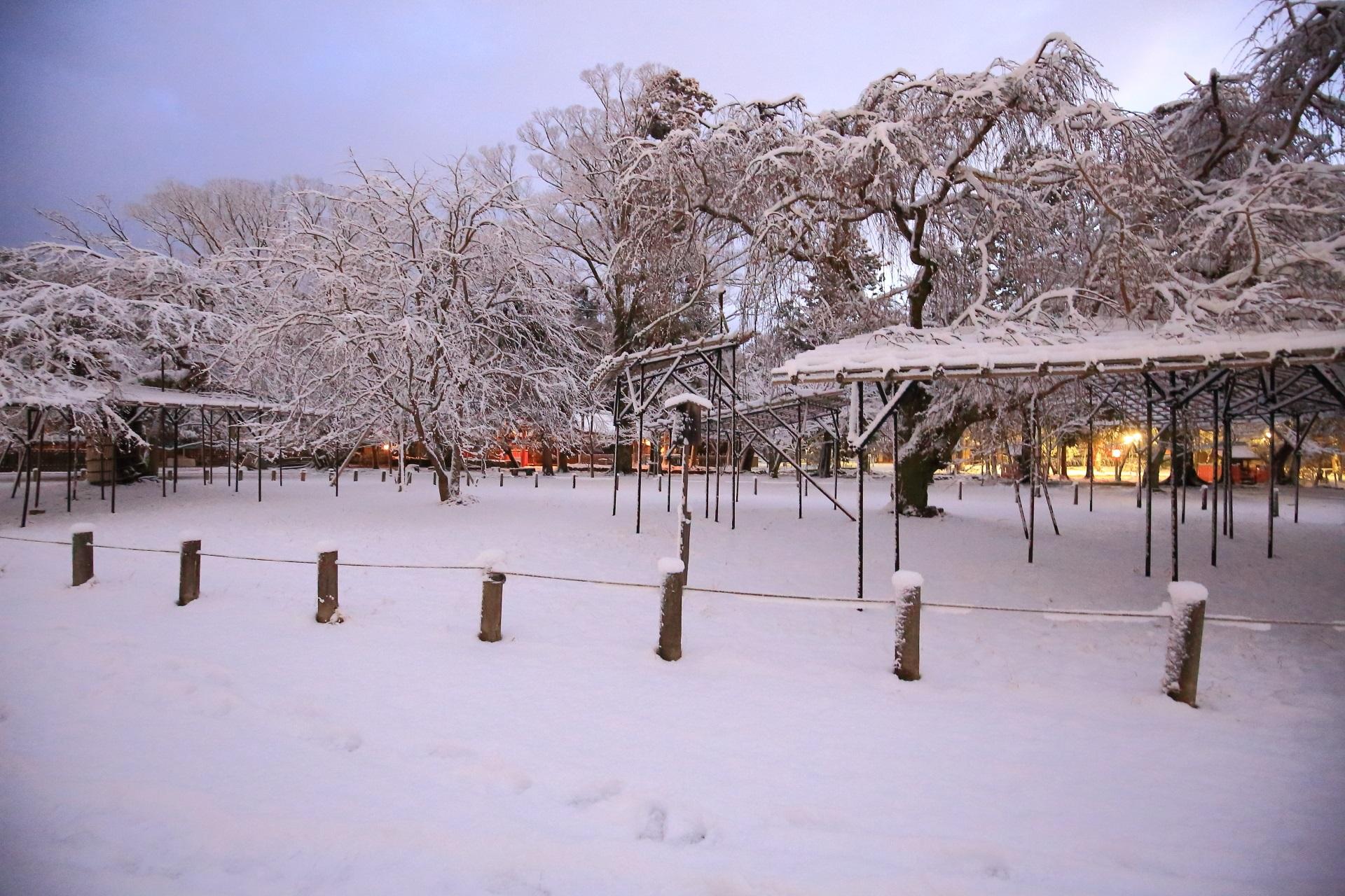 上賀茂神社の咲き乱れる雪の華