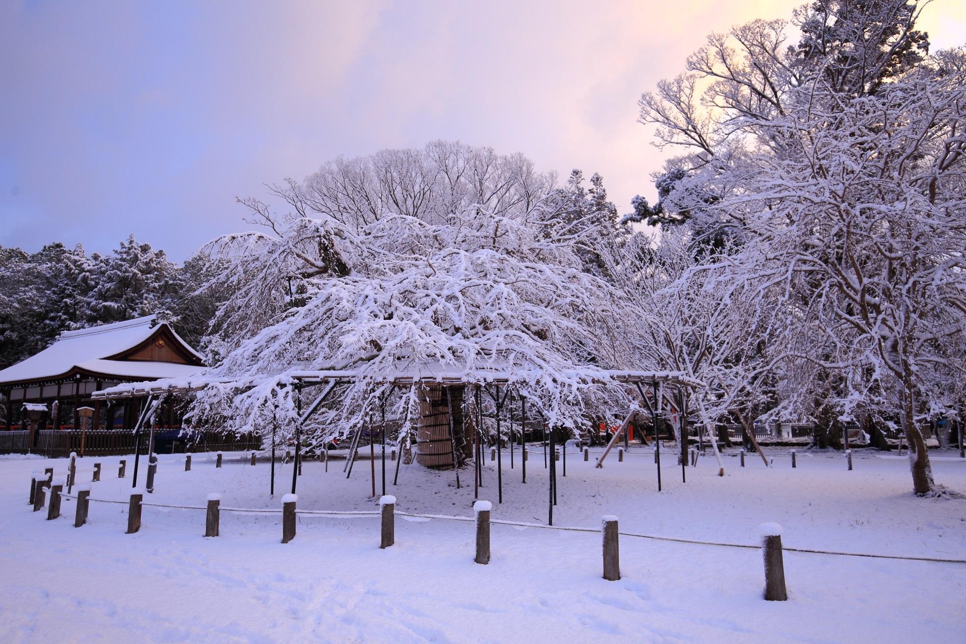 上賀茂神社の美しすぎる雪景色と朝焼け
