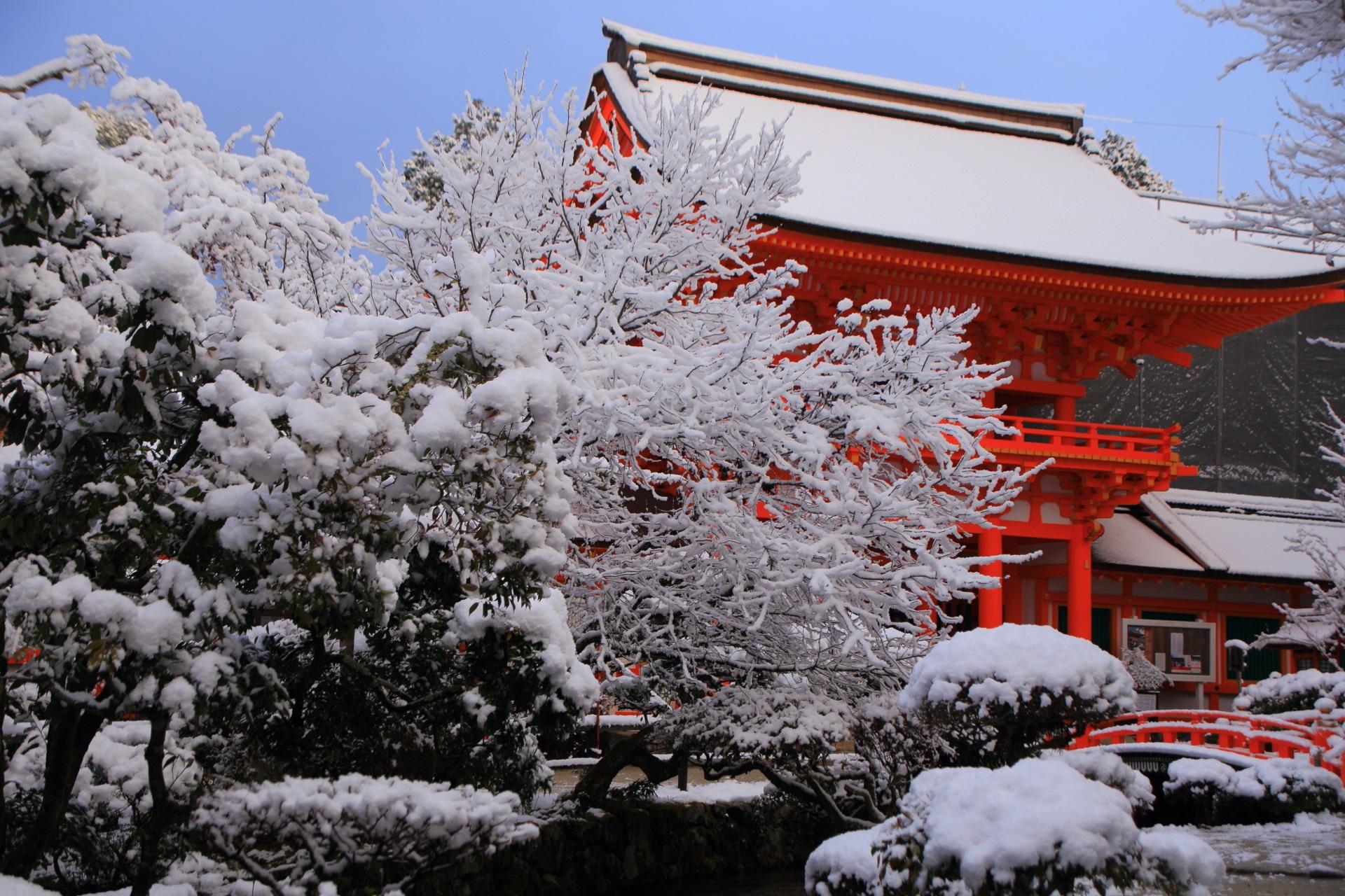 上賀茂神社の鮮やかな楼門と華やかな雪の花の絵になる冬の情景
