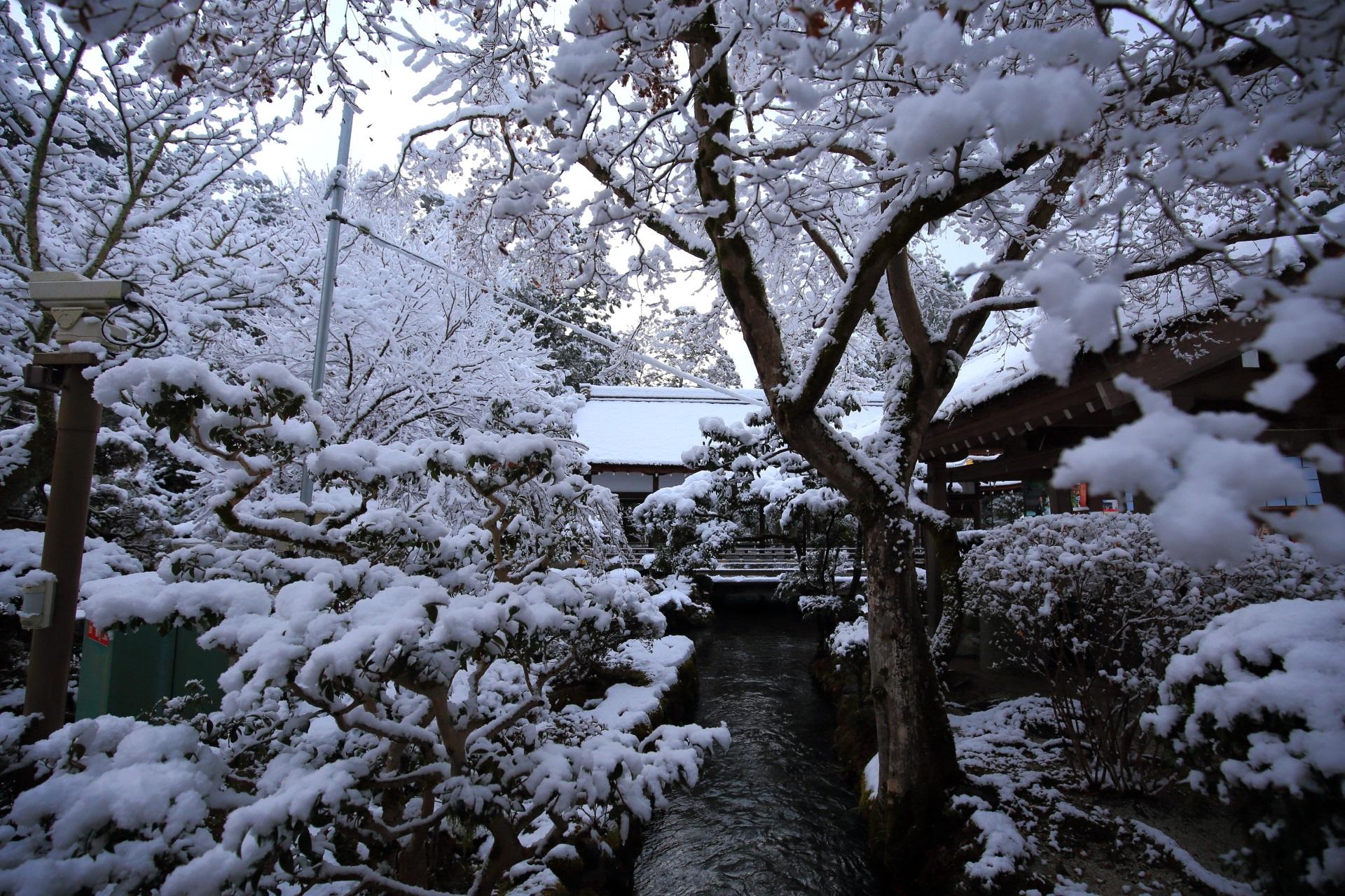 上賀茂神社の橋殿より上流の御手洗川の雪景色