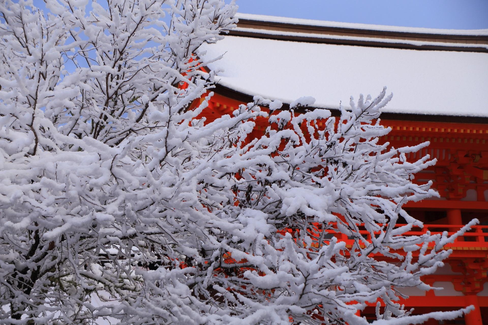 楼門とこぼれ落ちんばかりの雪の花