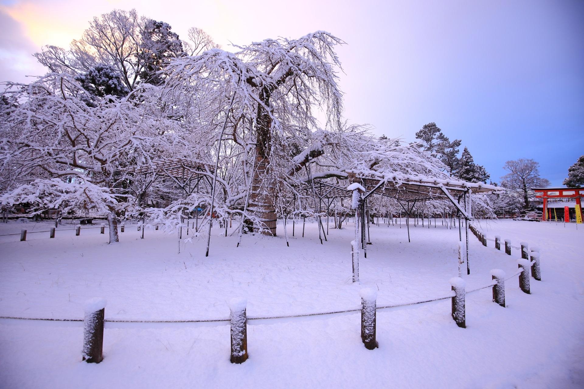 上賀茂神社の美しすぎる雪の華と銀世界