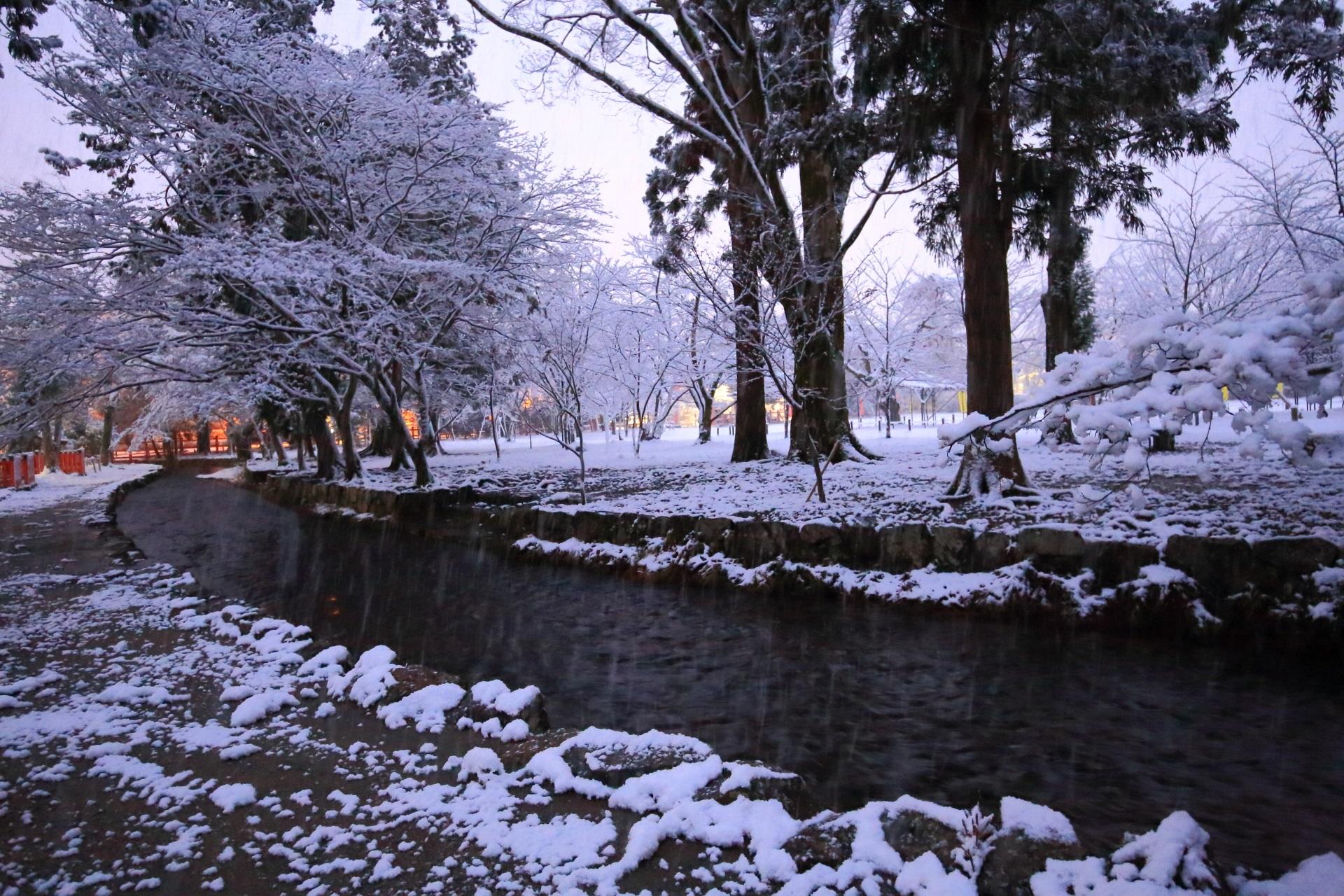 上賀茂神社の雪に染まるならの小川