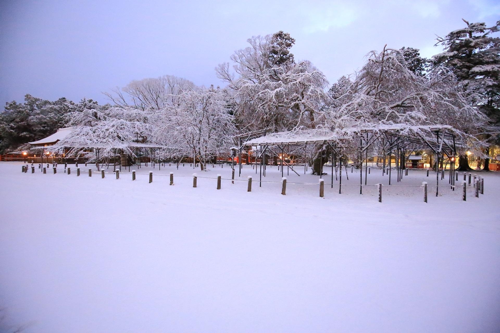 上賀茂神社 冬景色