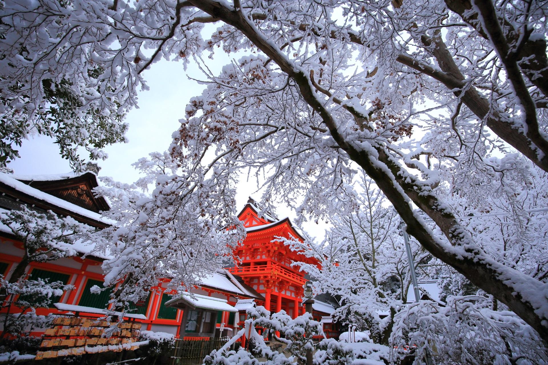 鮮やかな楼門と水辺を彩る冬景色