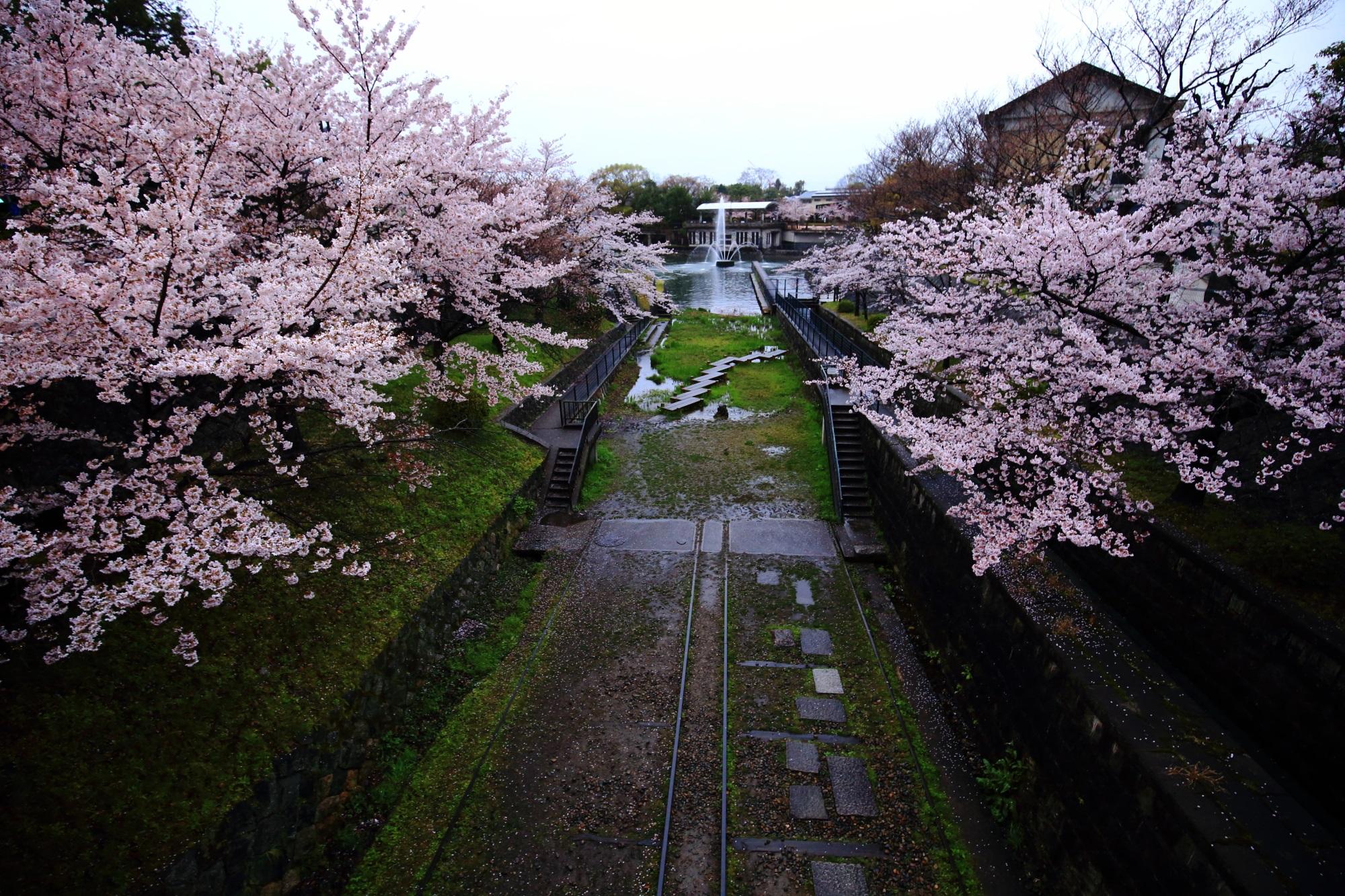 蹴上インクラインと琵琶湖疏水記念館の素晴らしい桜と情景