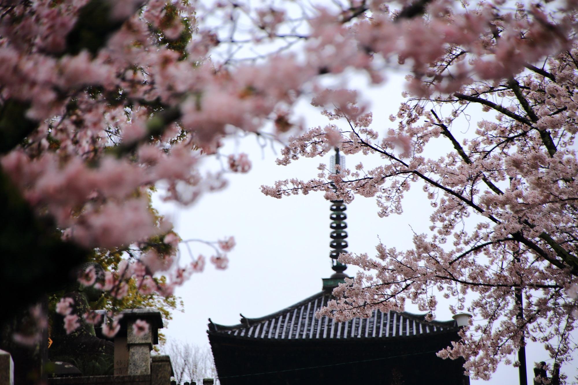 満開の桜につつまれる三重塔
