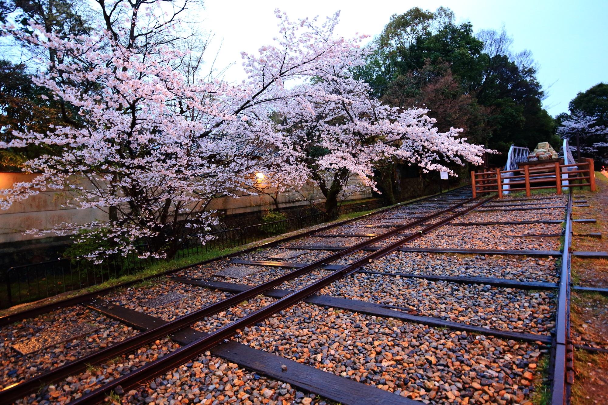 桜に彩られた残された船