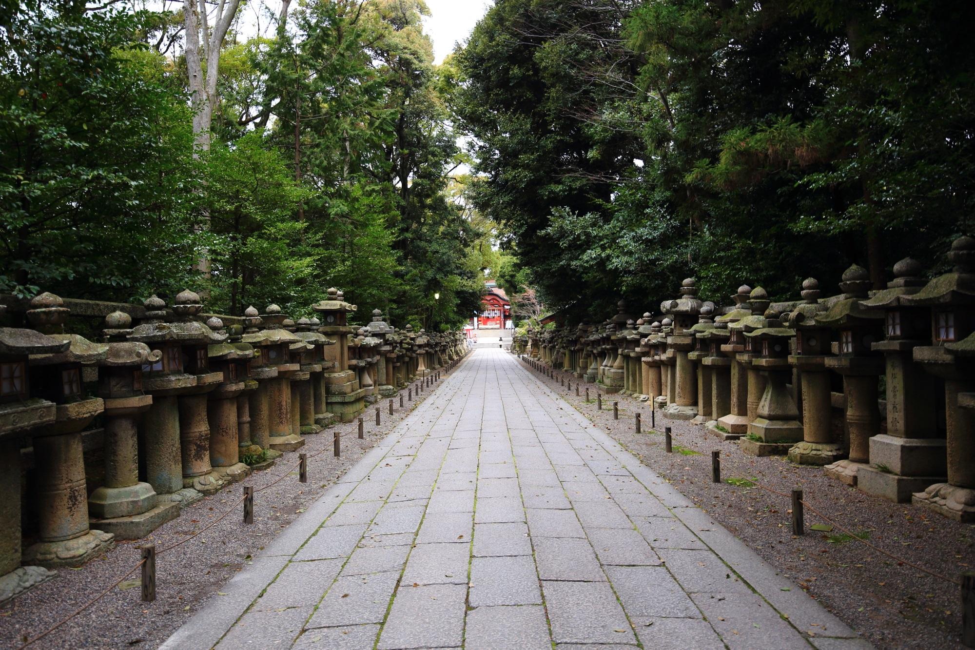 奥に南総門が見える石清水八幡宮の燈籠が並んだ長い参道