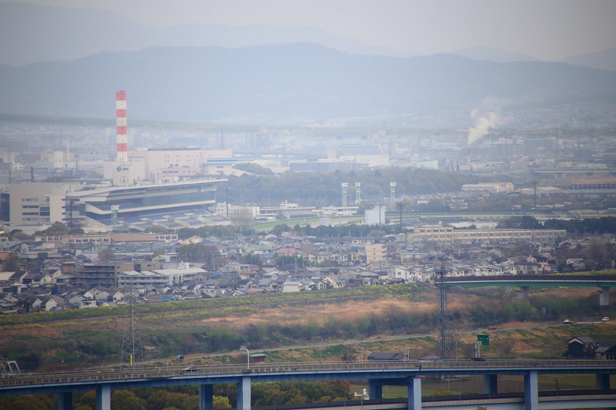 男山から見える京都競馬場
