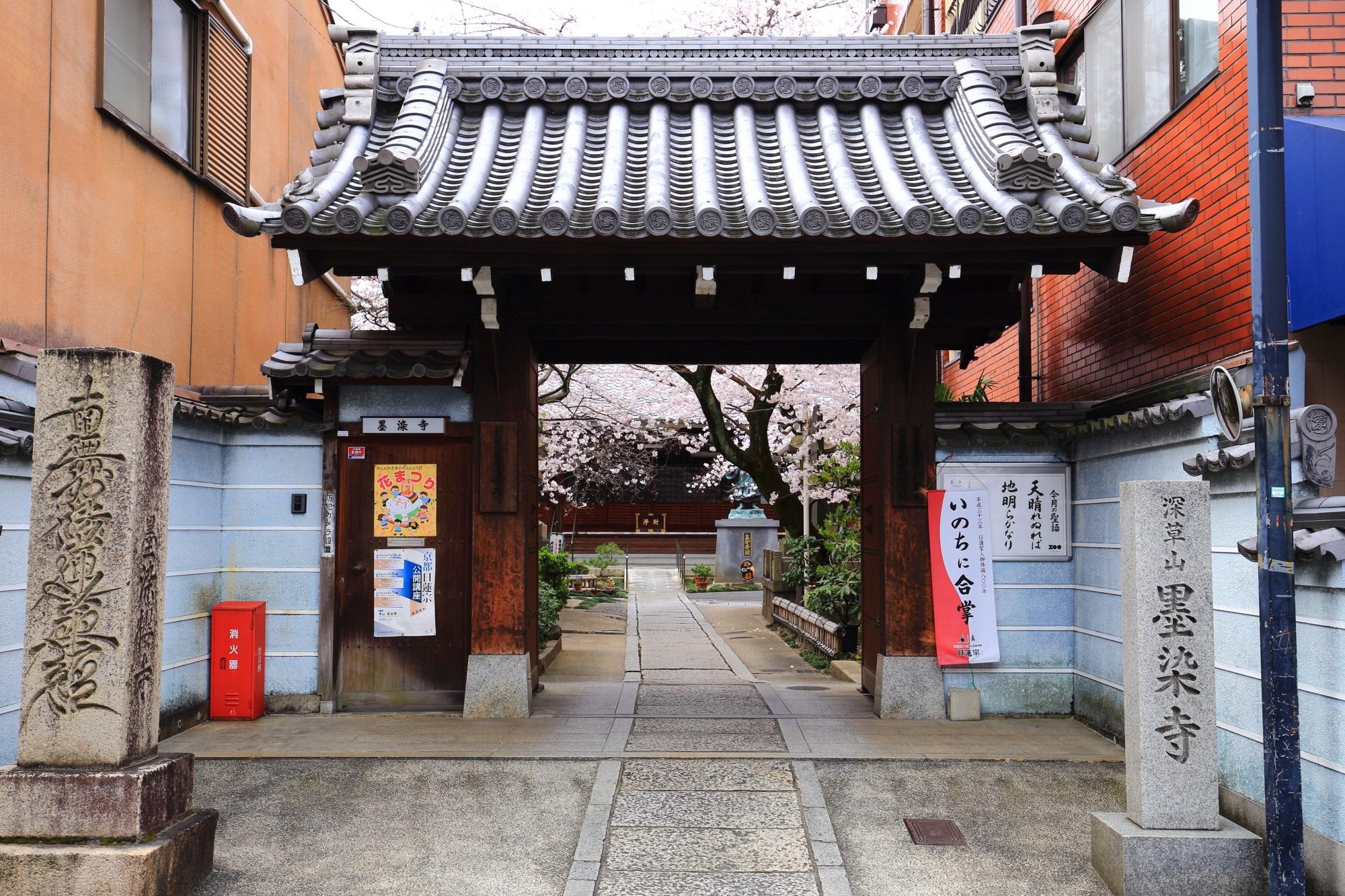 桜の名所の墨染寺(ぼくせんじ)