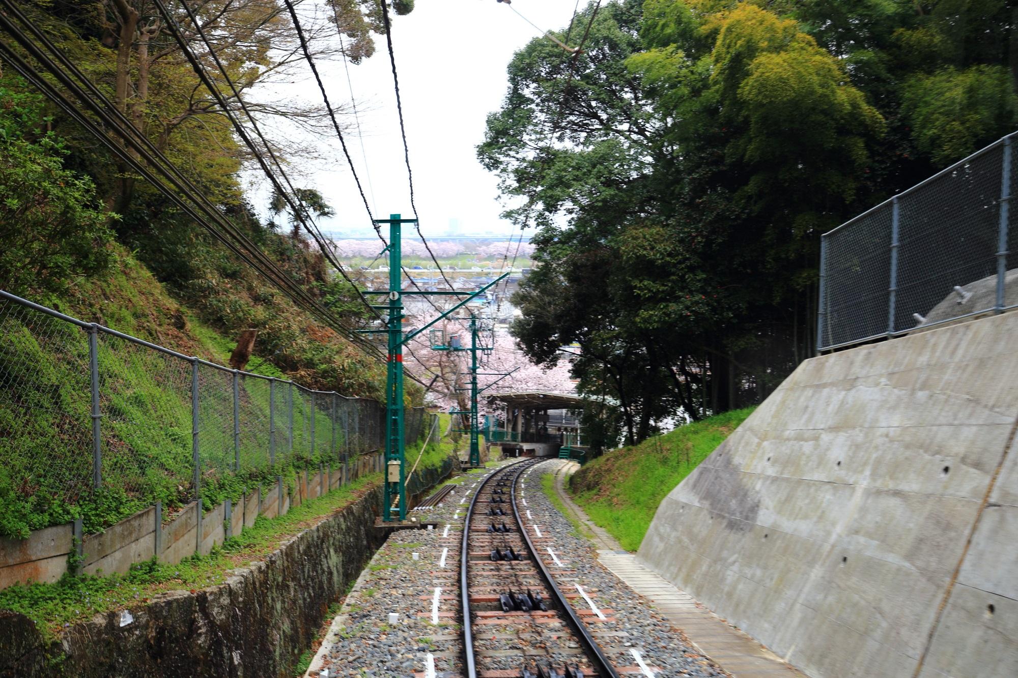 八幡男山ケーブルの八幡市駅と桜