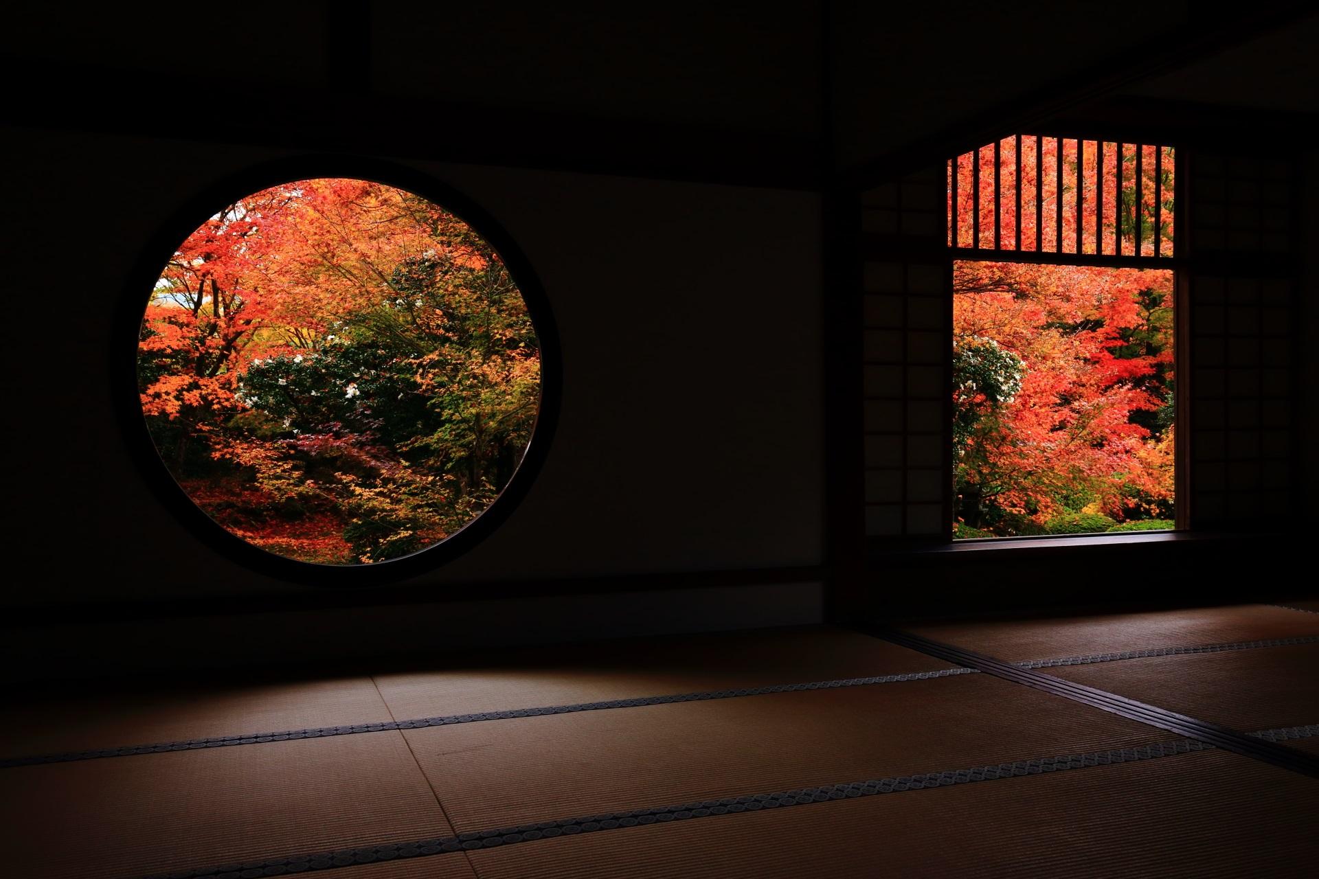 源光庵 紅葉 秋色にそまる悟りの窓と迷いの窓