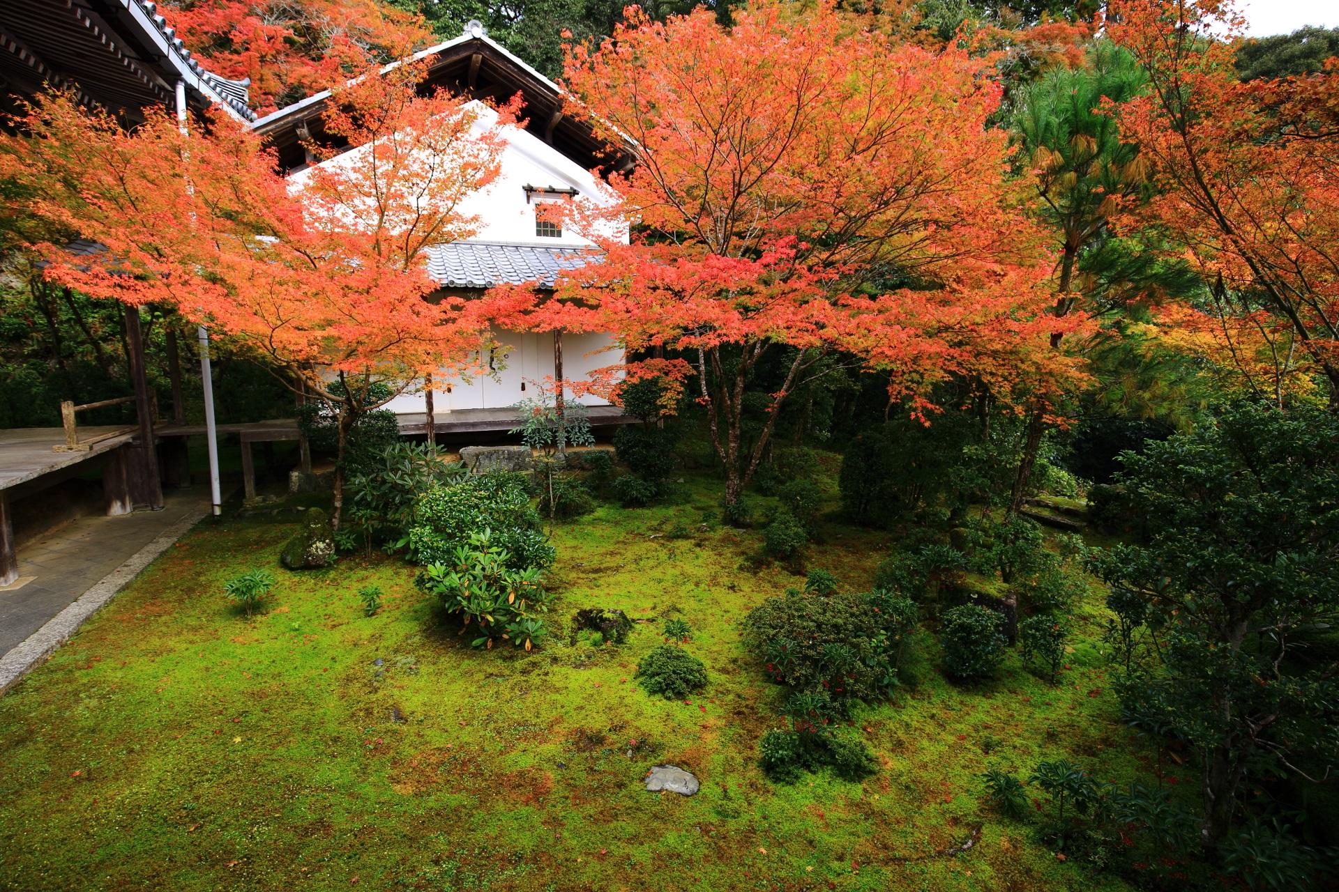 西明寺の素晴らしい紅葉と秋の情景