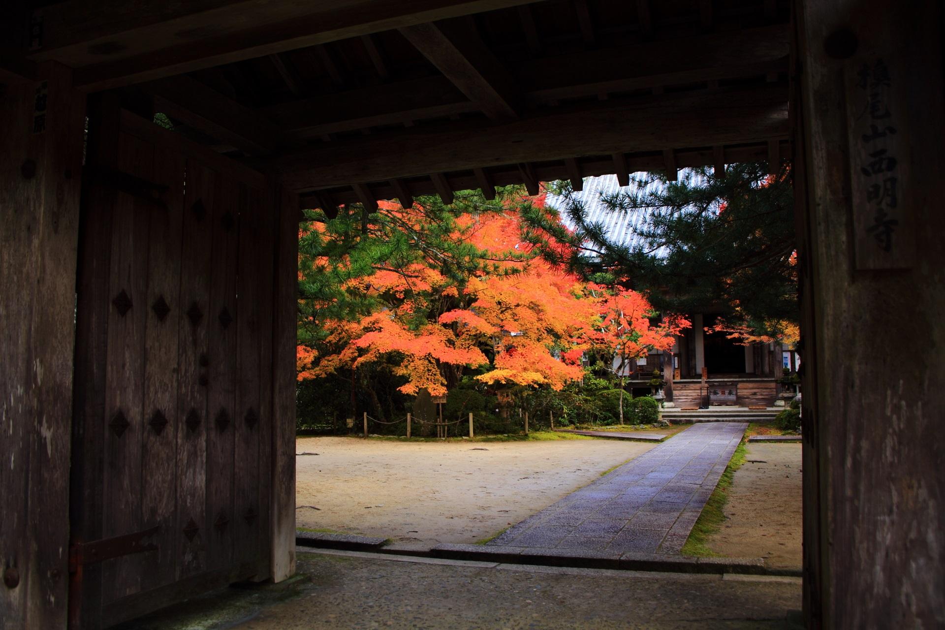 西明寺の表門から見える美しい紅葉