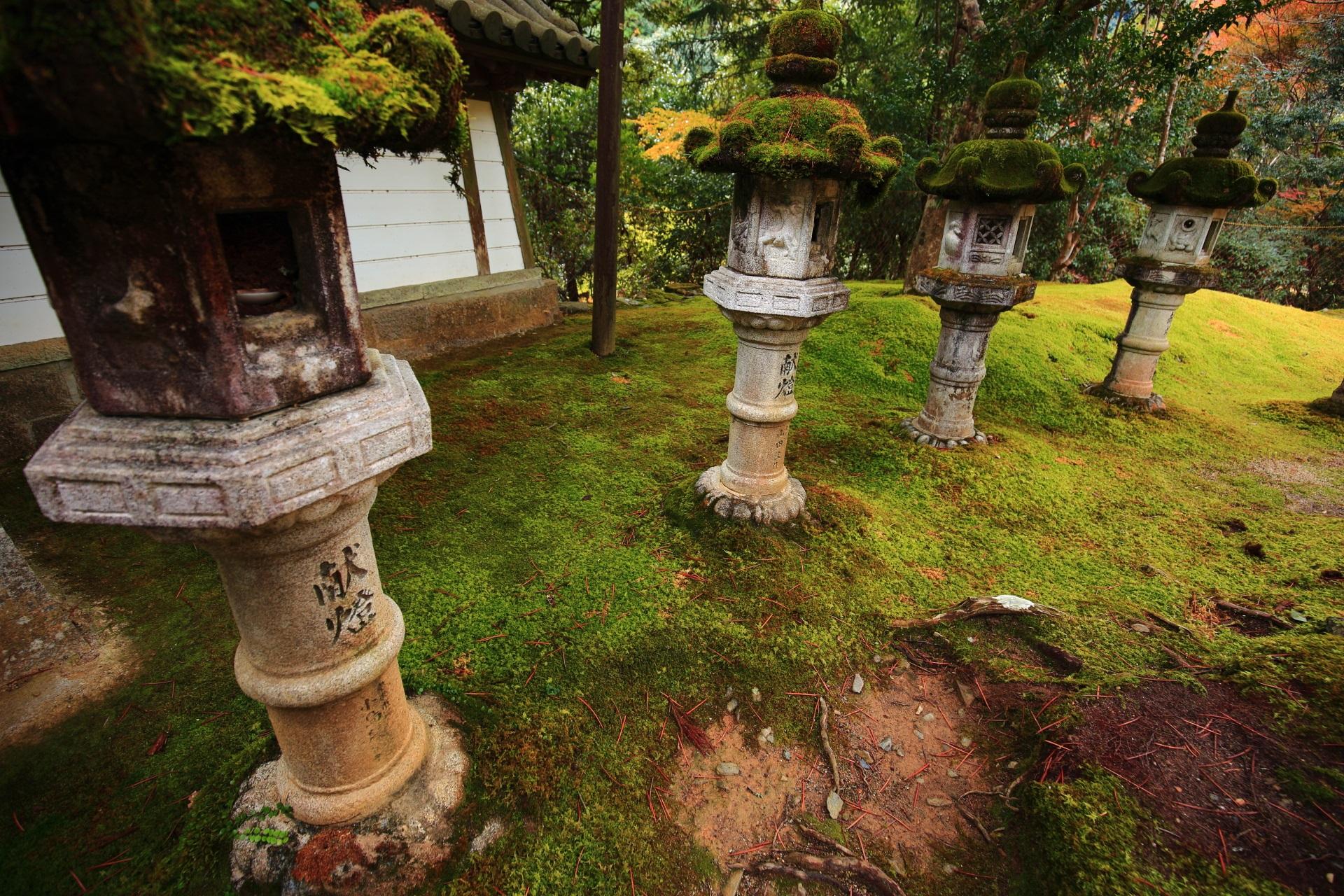 西明寺の風情ある境内のたくさんの燈籠