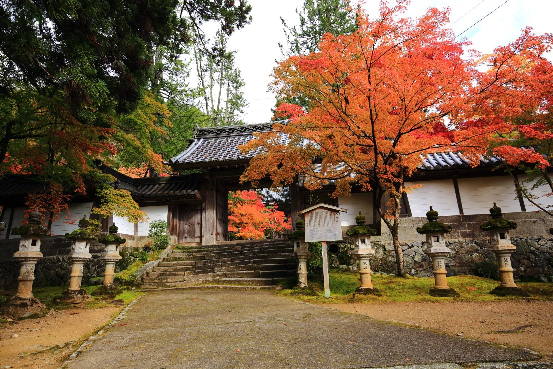 西明寺の表門と紅葉