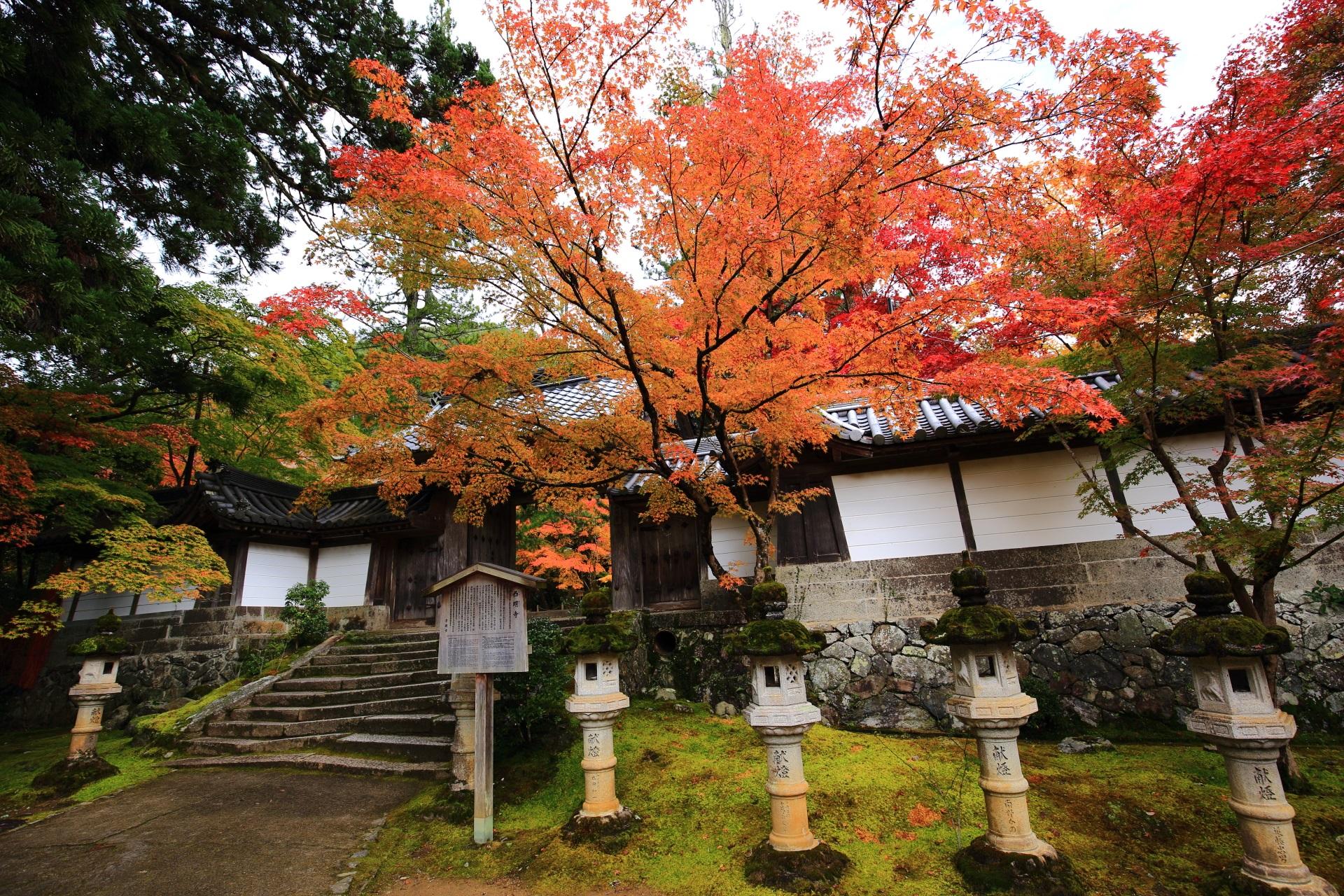 高画質 写真 西明寺 燈籠 紅葉