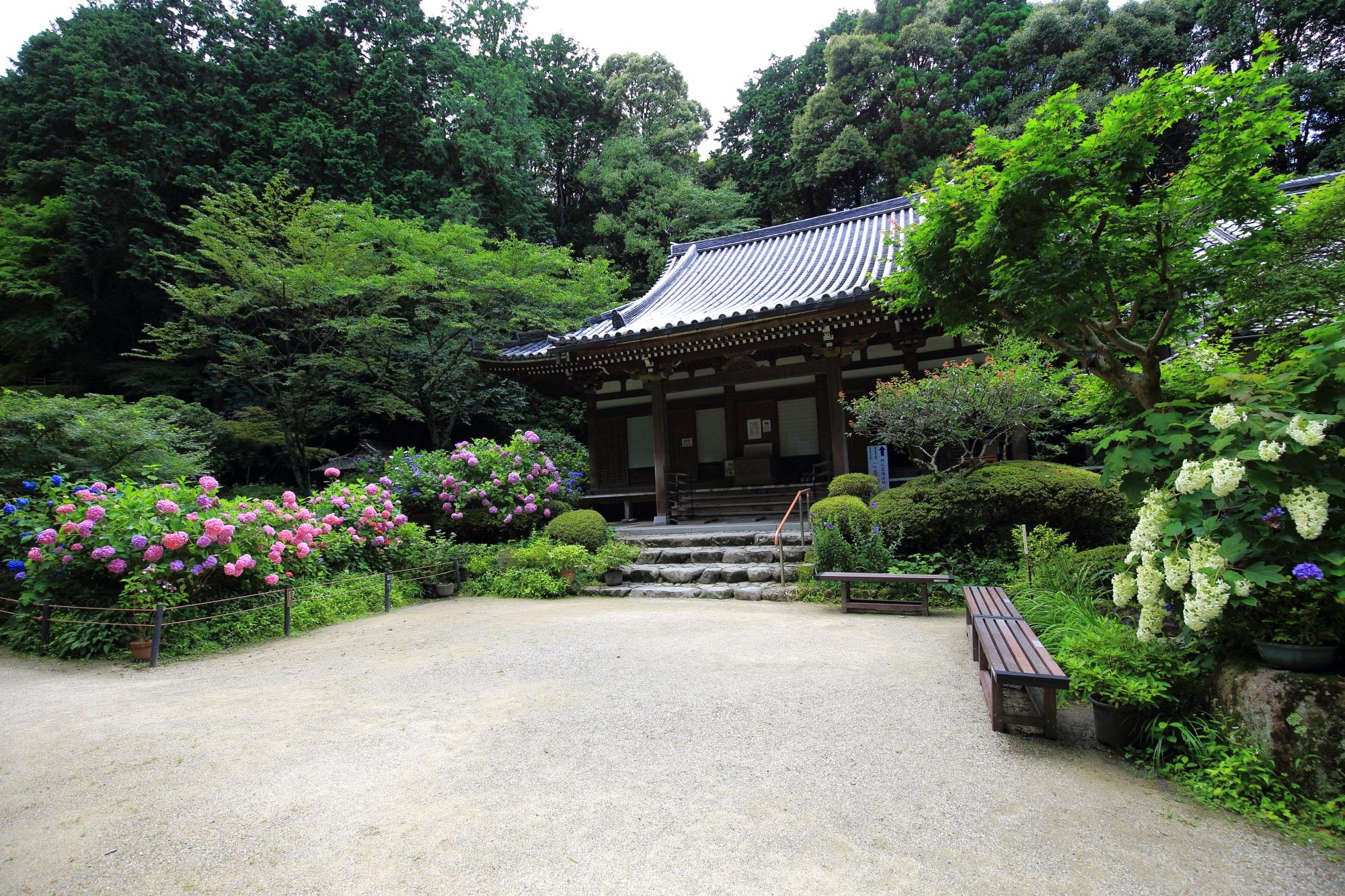 両脇は緑や紫陽花で溢れる岩船寺の本堂