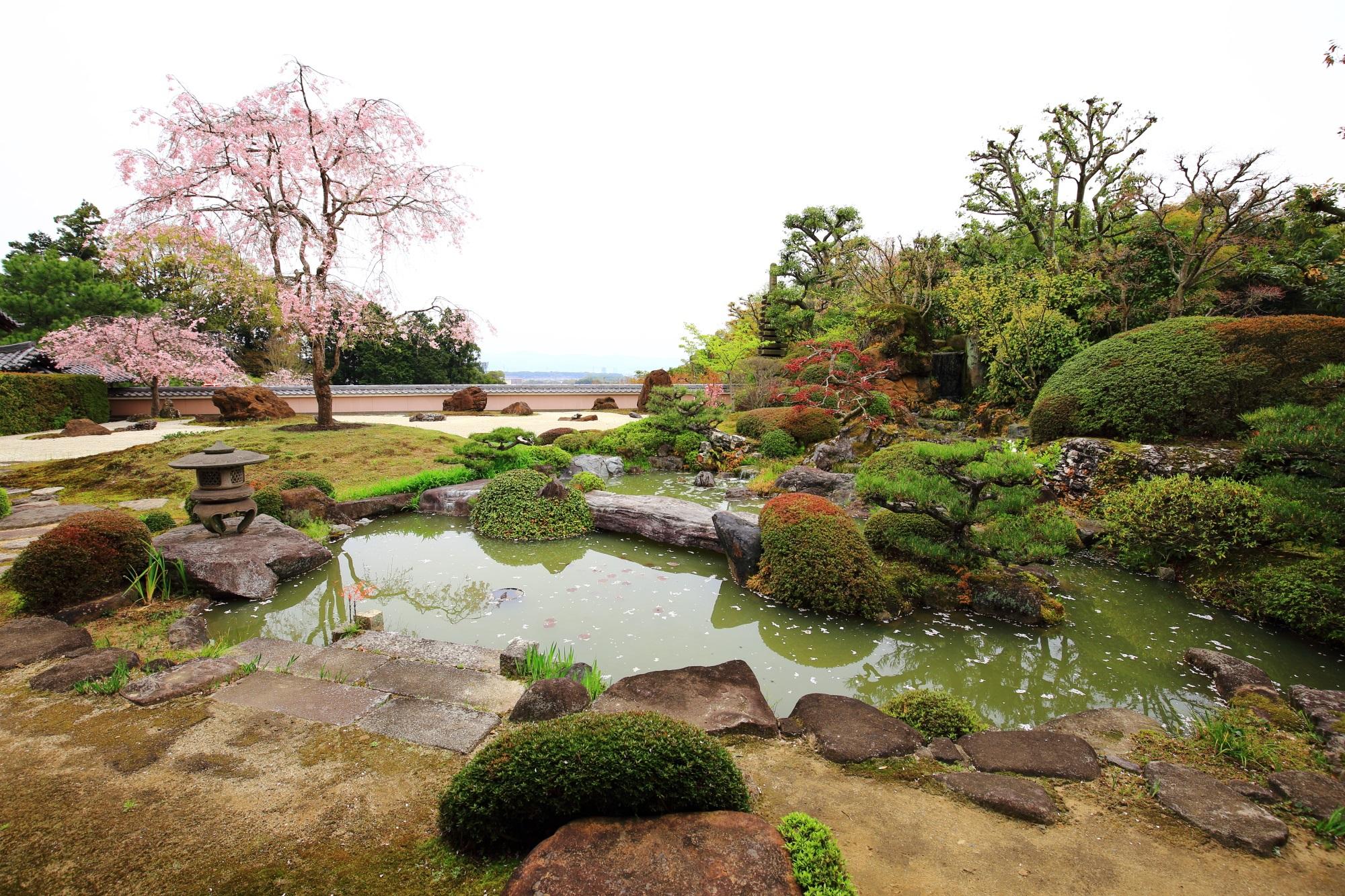 真ん中と奥にしだれ桜がある宝生苑(ほうしょうえん)