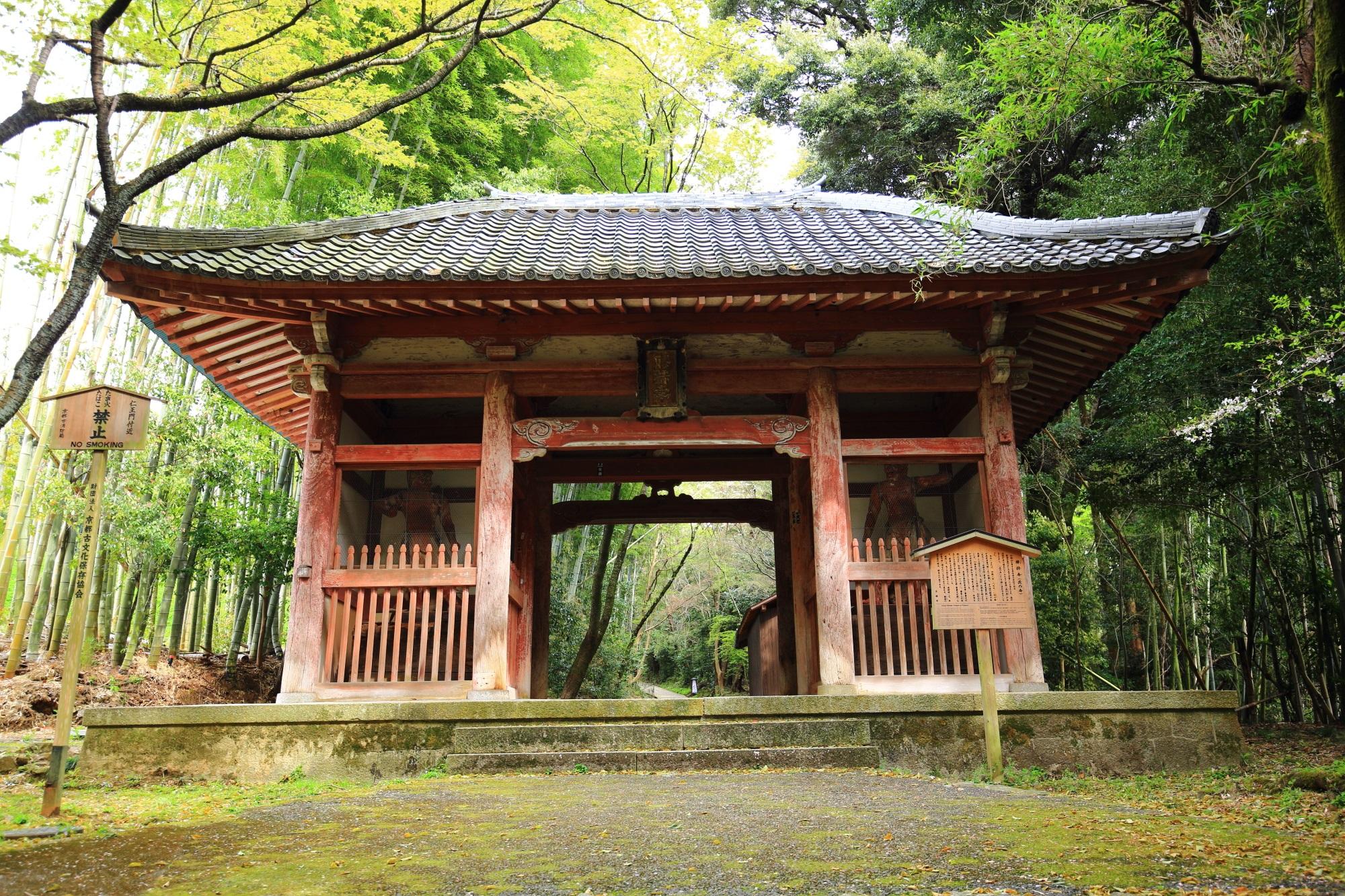 竹林に佇む見事な構えの仁王門