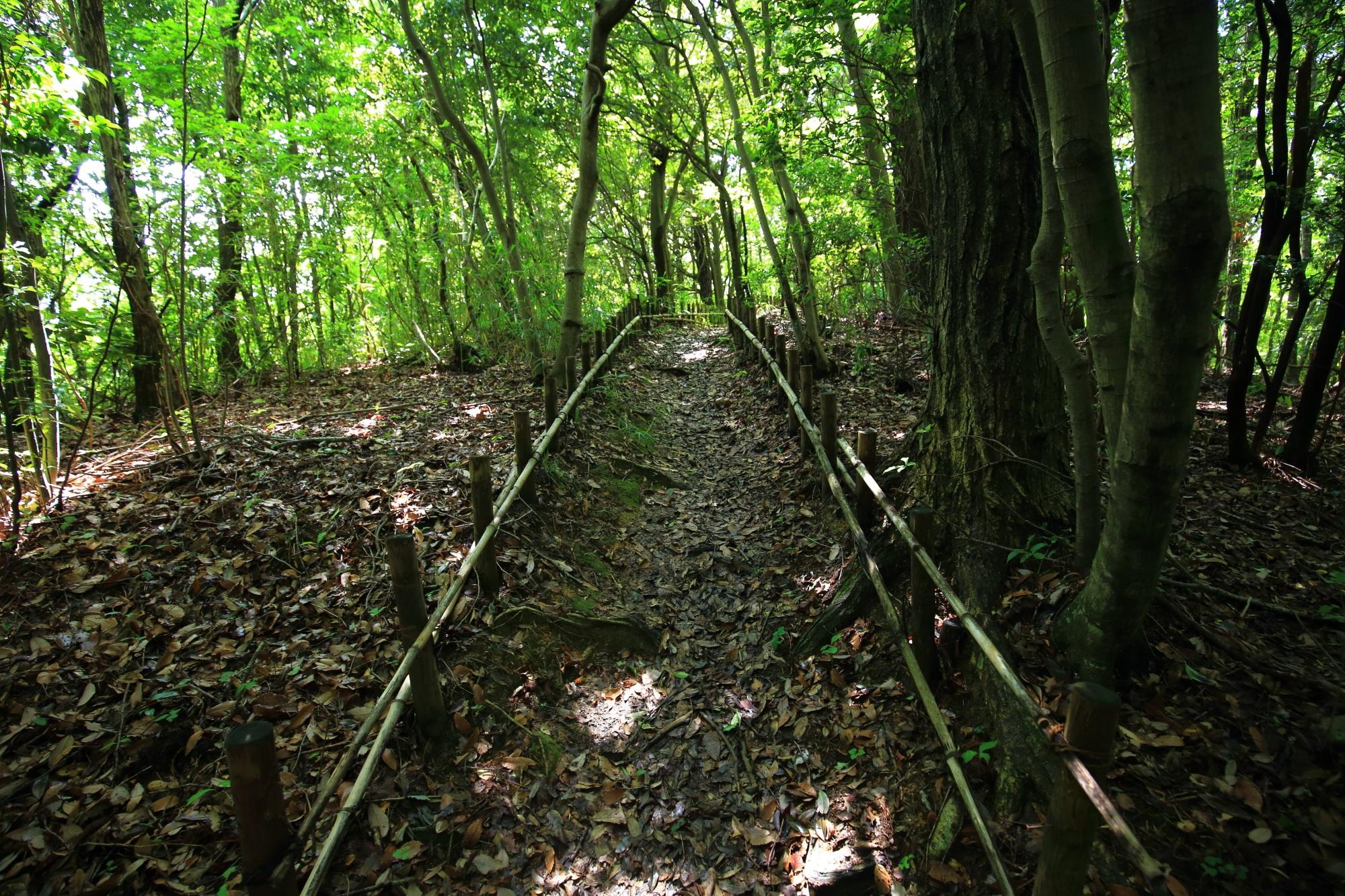 「貝吹石」はこちらという矢印が出ている岩船寺の道