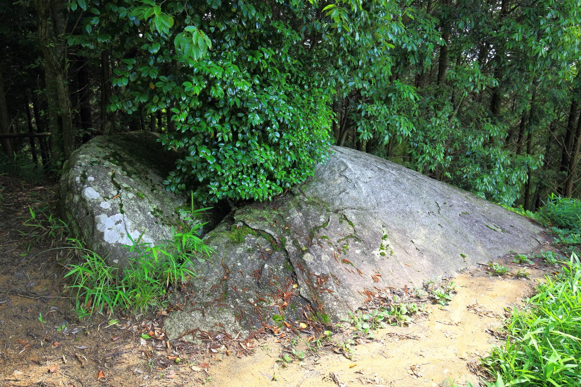 岩船寺の大きな「貝吹石」