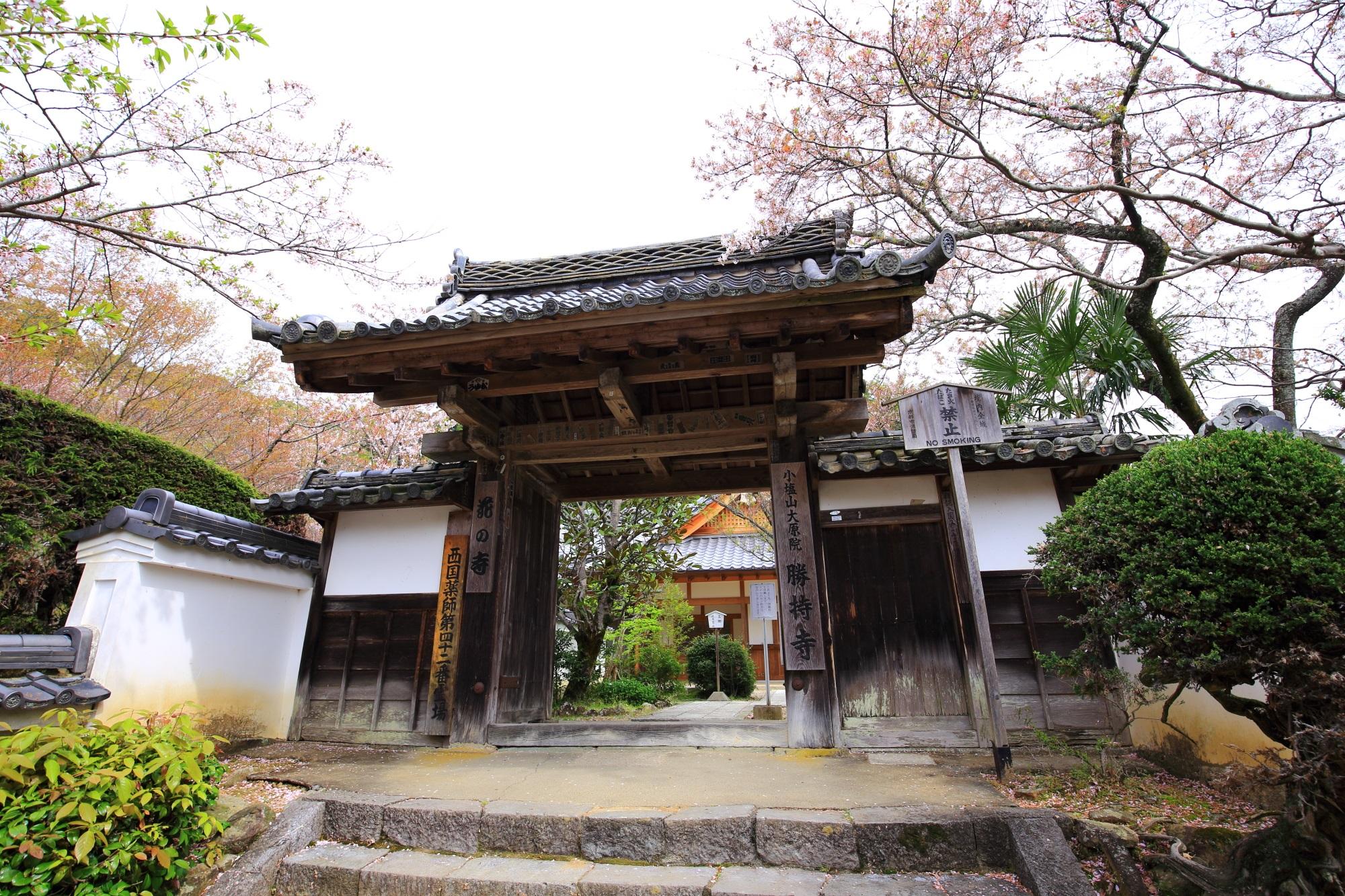 周辺を桜が彩る勝持寺の南門