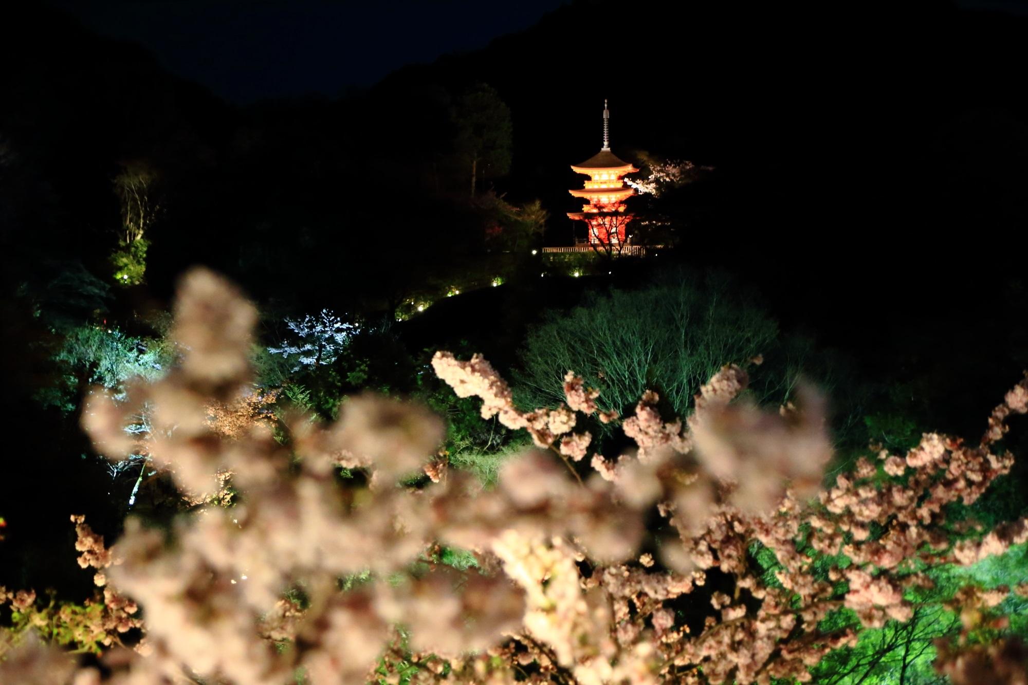 闇夜を彩る夜桜と浮かび上がる子安塔