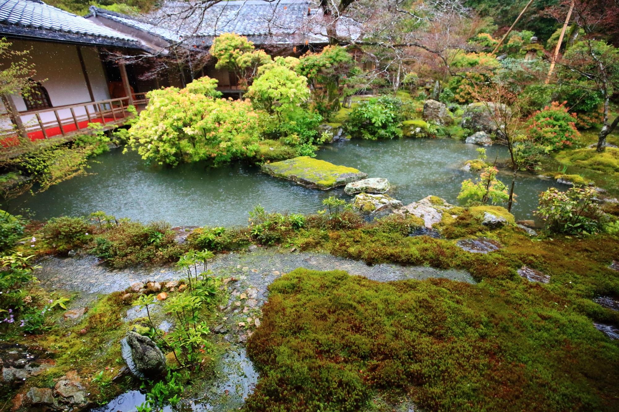 苔や多種多様な緑が美しい実相院の池泉式庭園