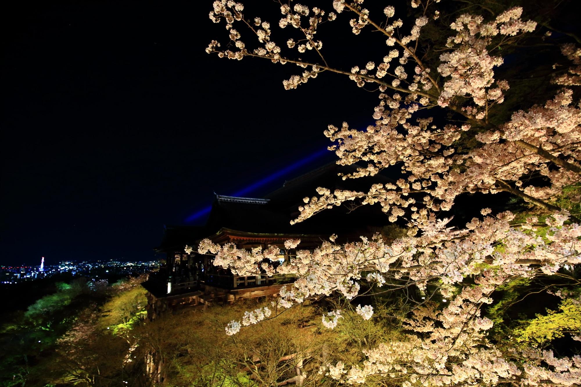 幻想的に浮かび上がる清水の舞台と華やかで妖艶な夜桜