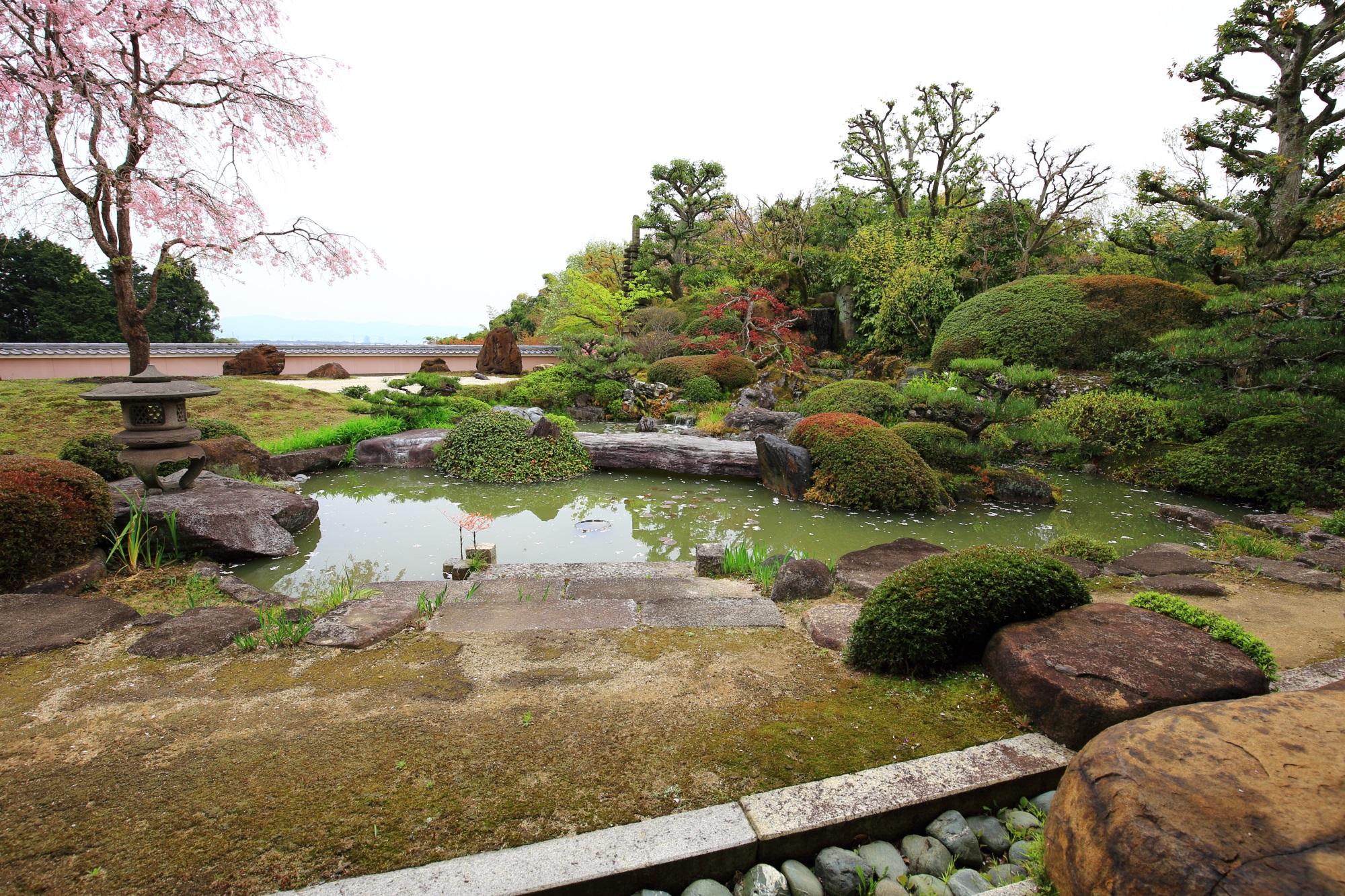 正法寺の素晴らしい桜や芝桜と春の彩り