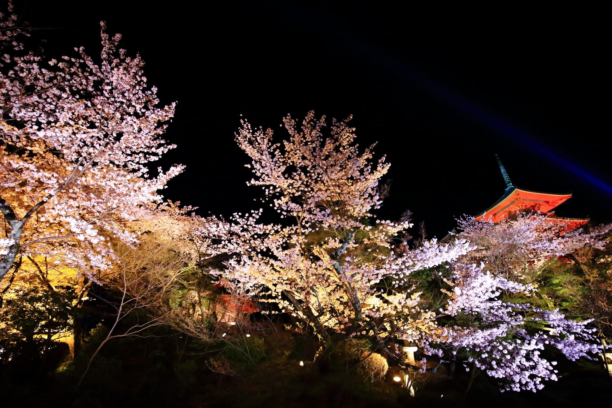 鮮やかな朱色の三重塔と見事な彩りの夜桜