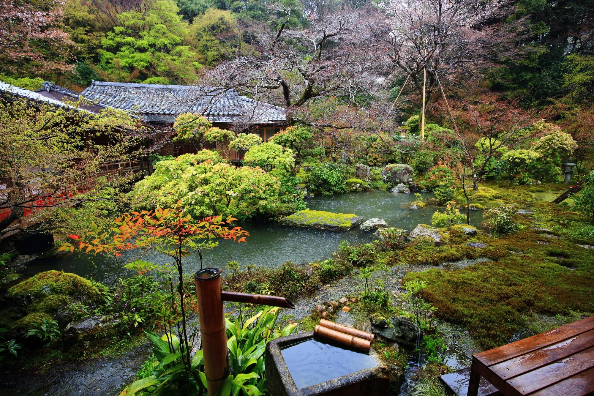 雨がだいぶ降って池の水が溢れそうな庭園