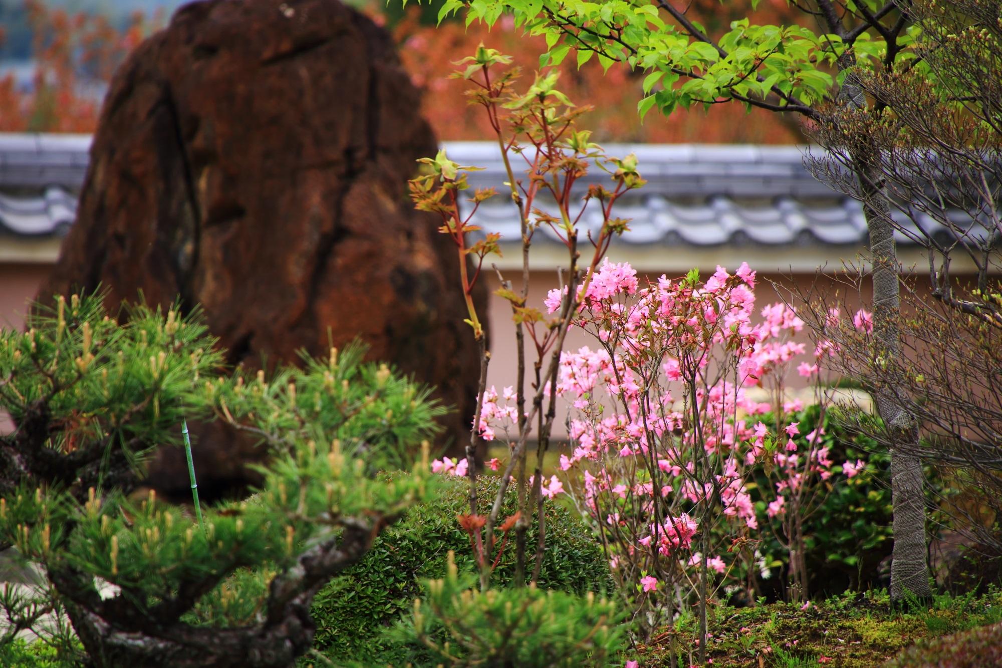 緑や花々もたくさん植えられており彩りもある宝生苑